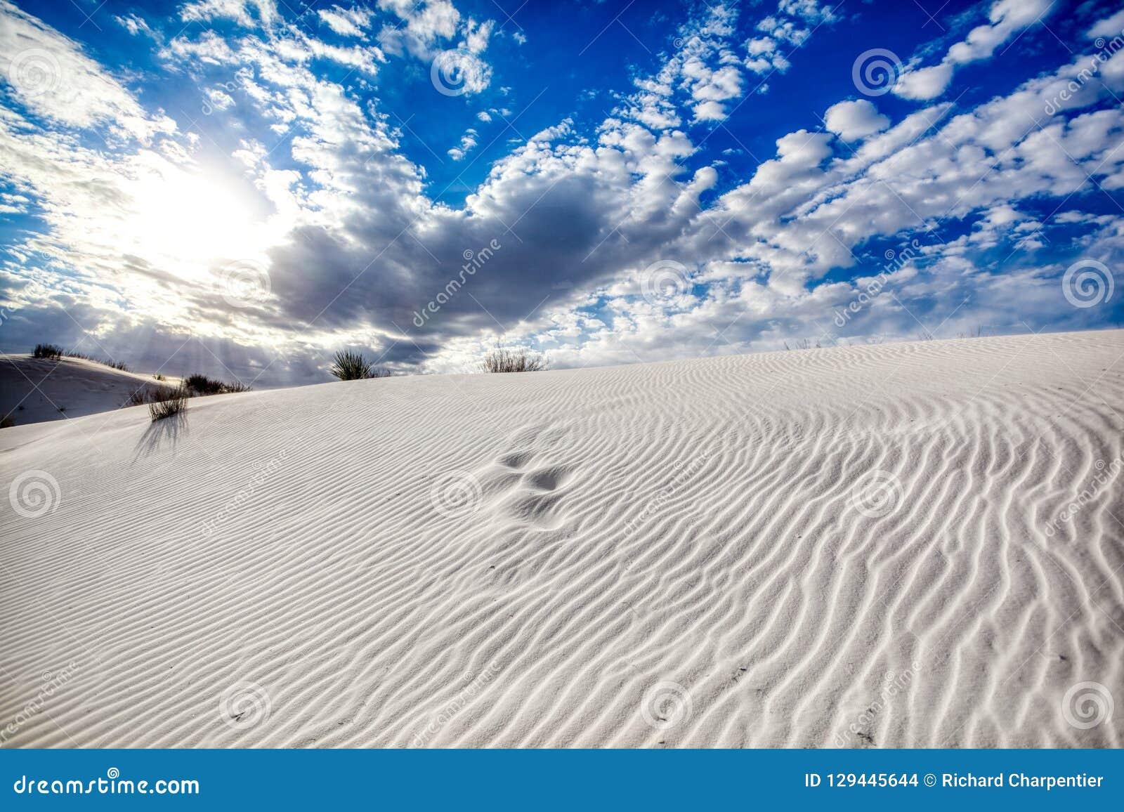 Картины в облаках и песчанных дюнах на белом памятнике песков