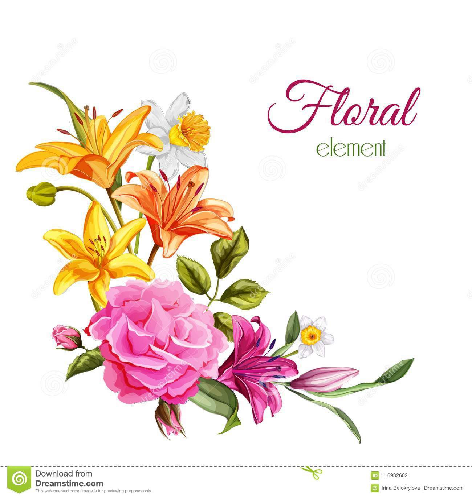 Карточка свадьбы цветка лилии акварели вектора розовая