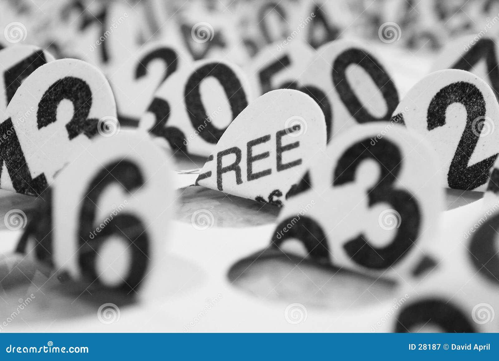 карточка bingo