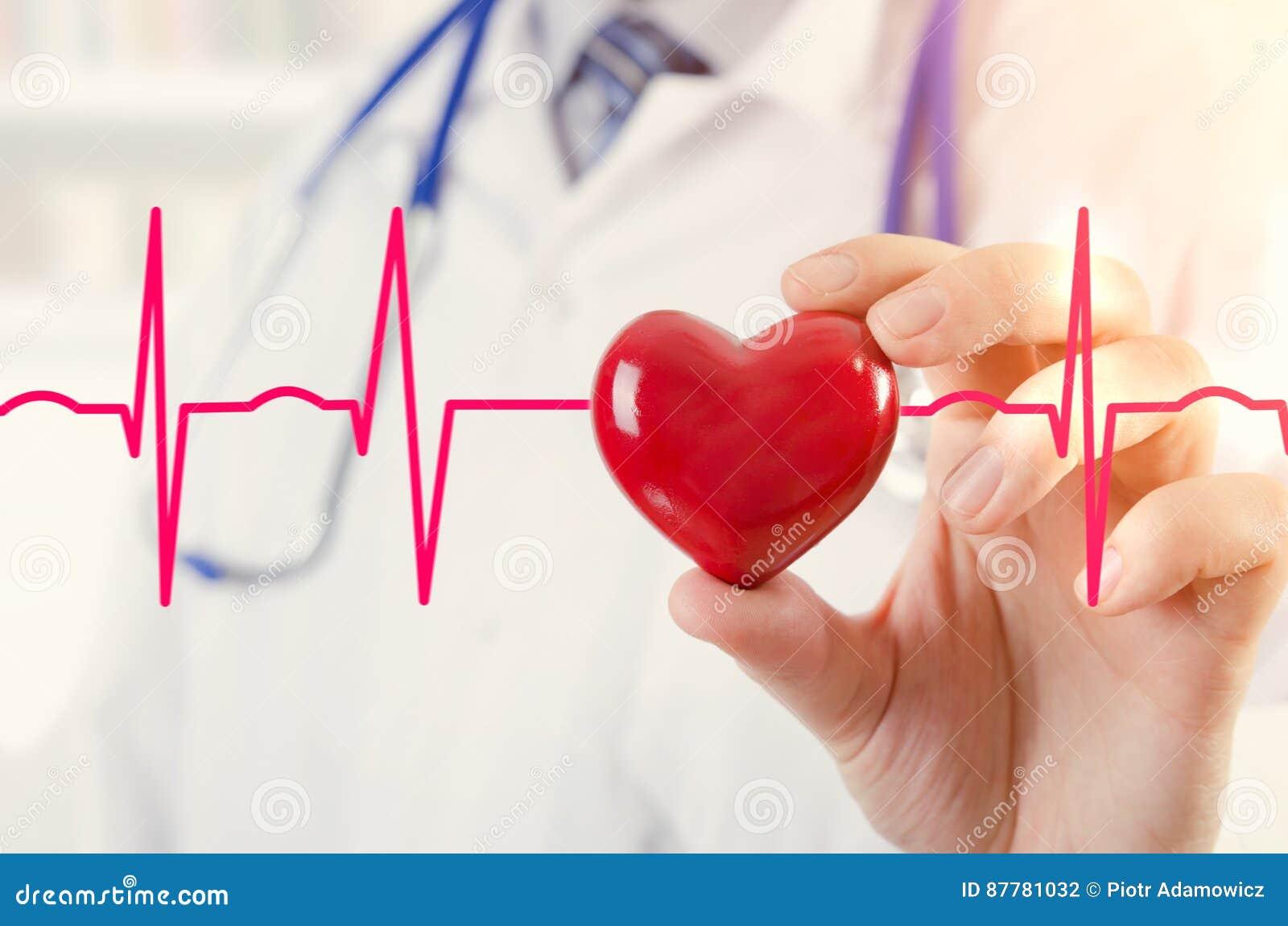 Кардиолог держа модель сердца 3D Концепция с cardiogram