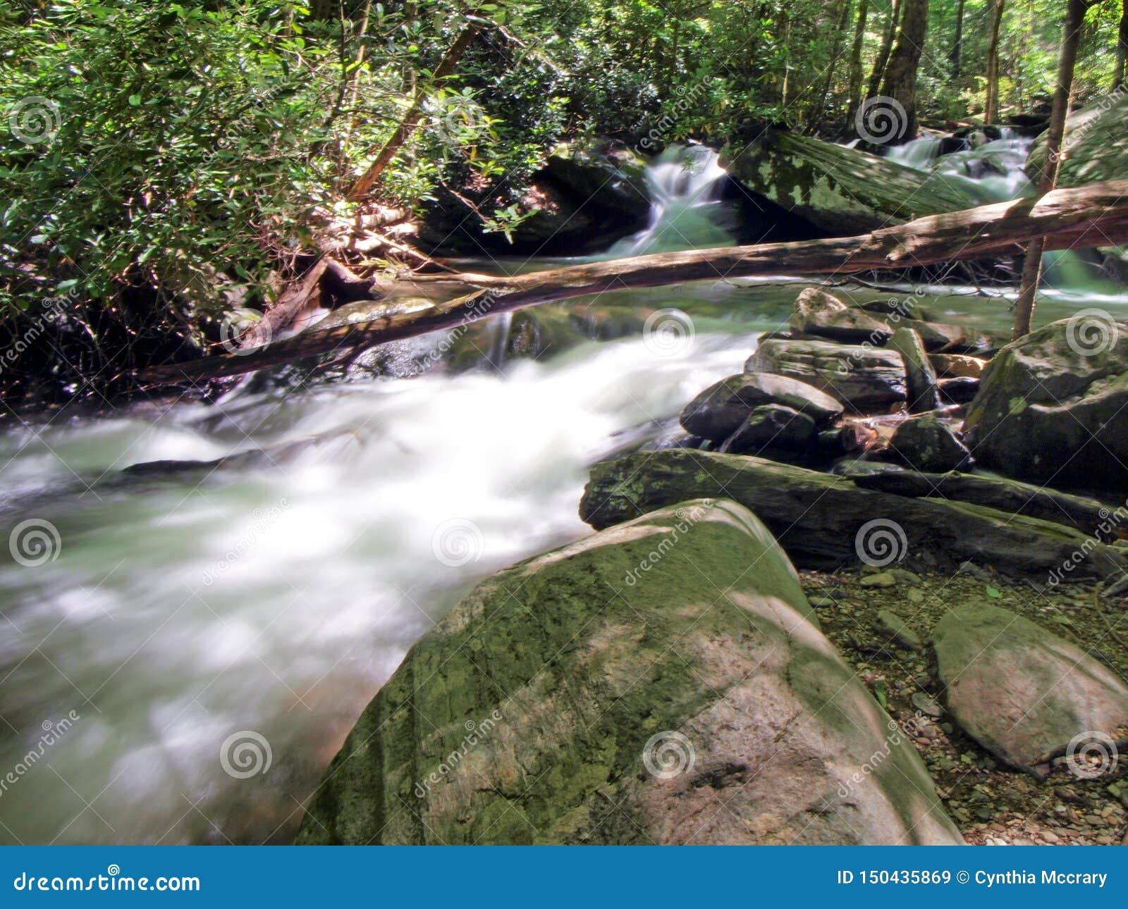 Каскады вдоль реки Catawba в национальном лесе Pisgah