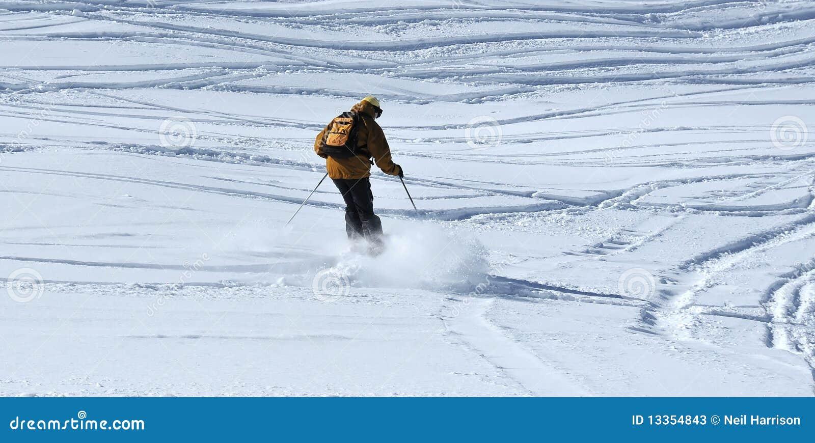 катание на лыжах порошка
