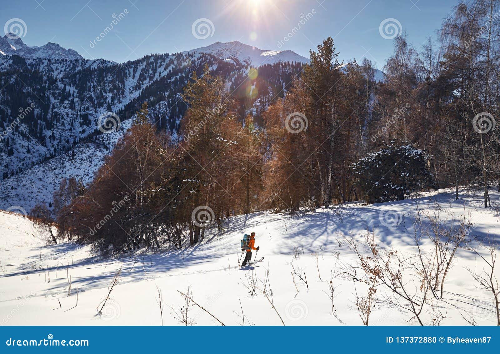 Кататься на лыжах на свежем снеге порошка