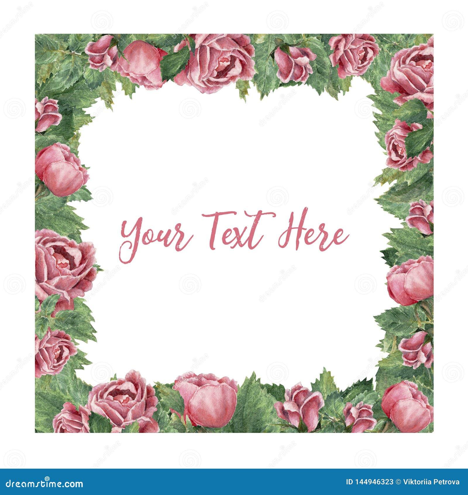 Квадратная рамка сделанная розовых зацветая роз