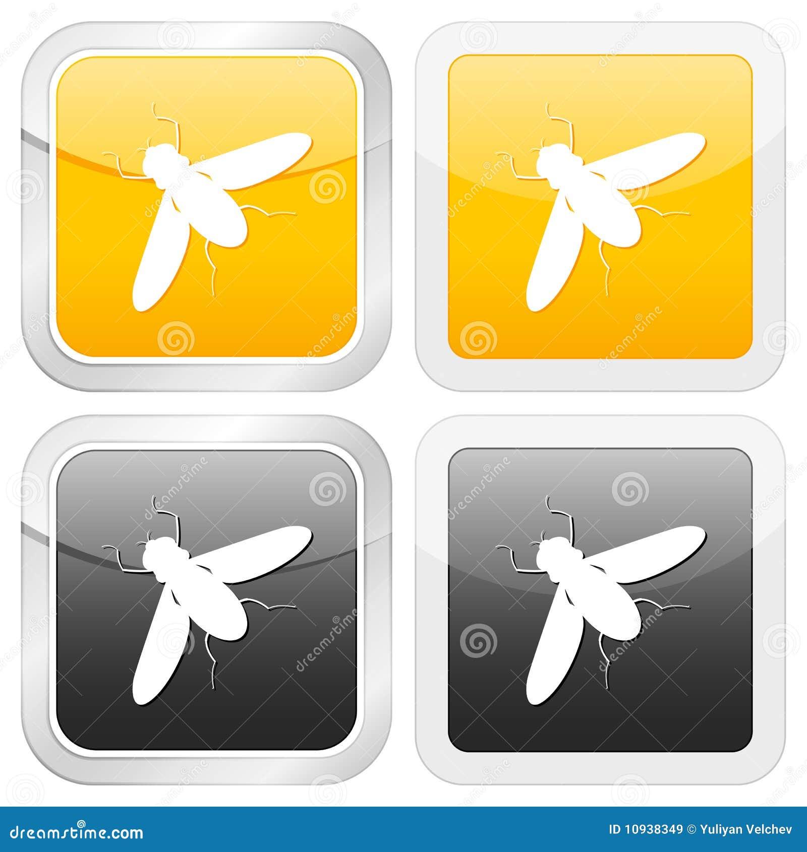 квадрат насекомого иконы