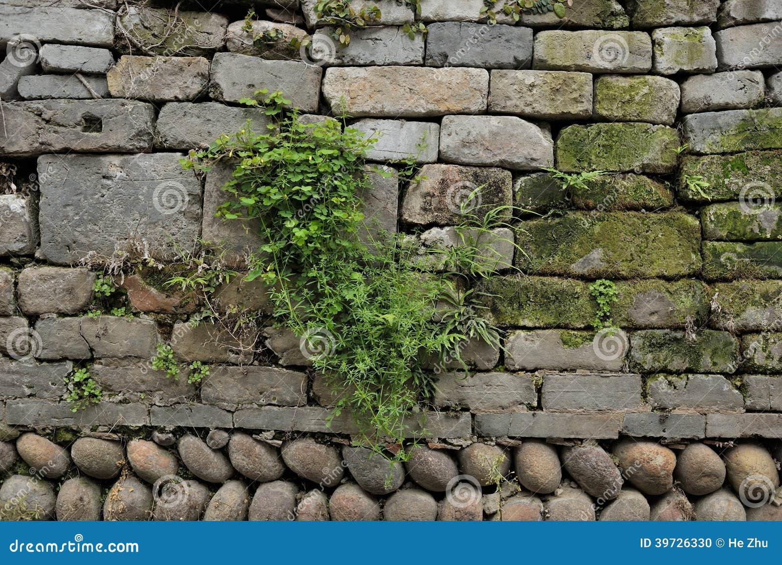 Китайская древняя стена
