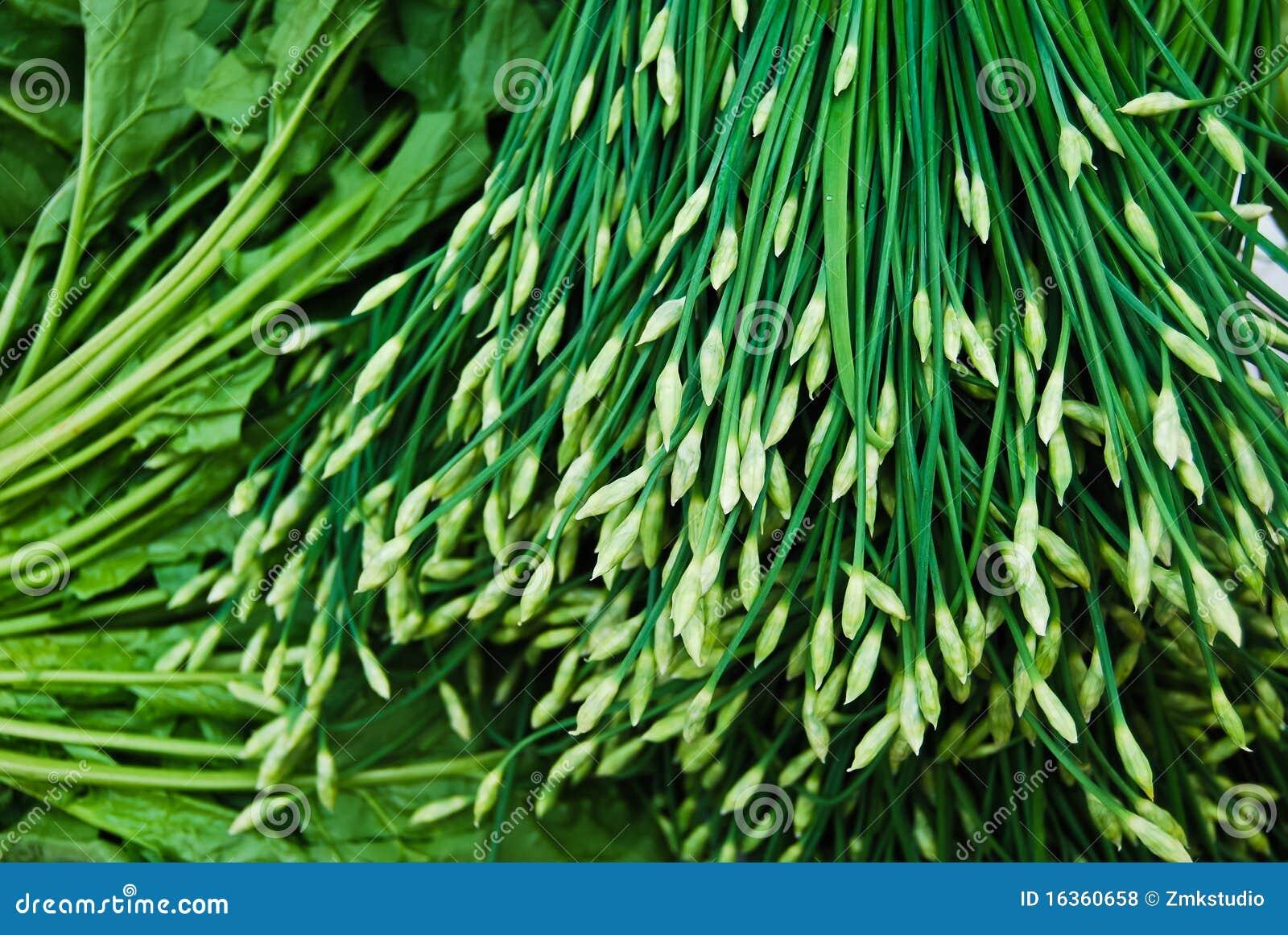 китайский свежий лук-порей много выходит на рынок