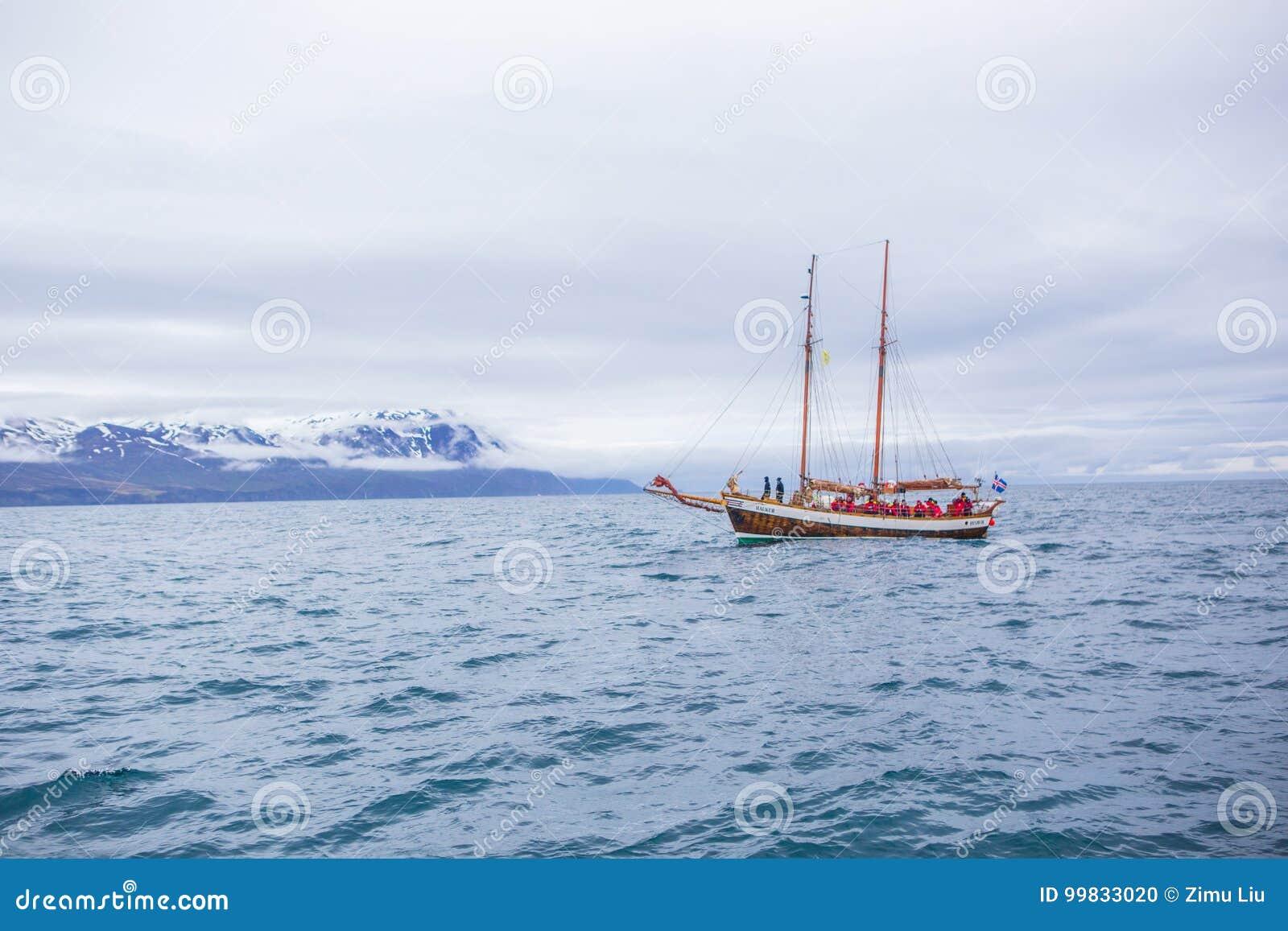 кит шлюпки наблюдая