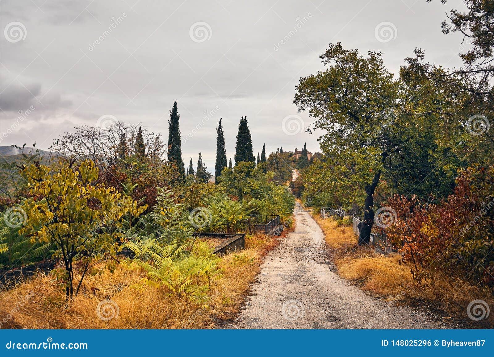 Кладбище в Signagi на осени