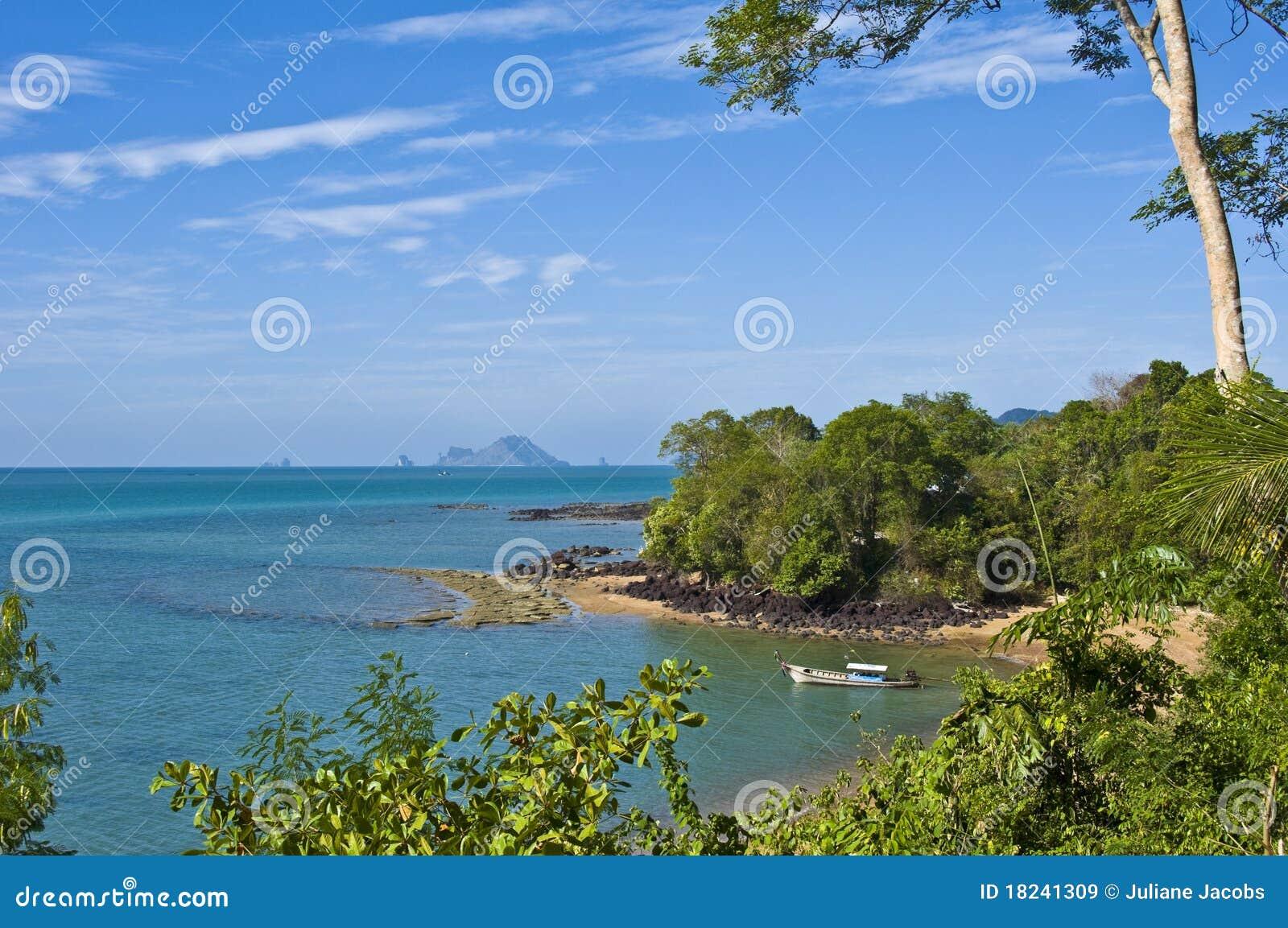 Кладбище пляжа раковины Сьюзан Hoi ископаемое