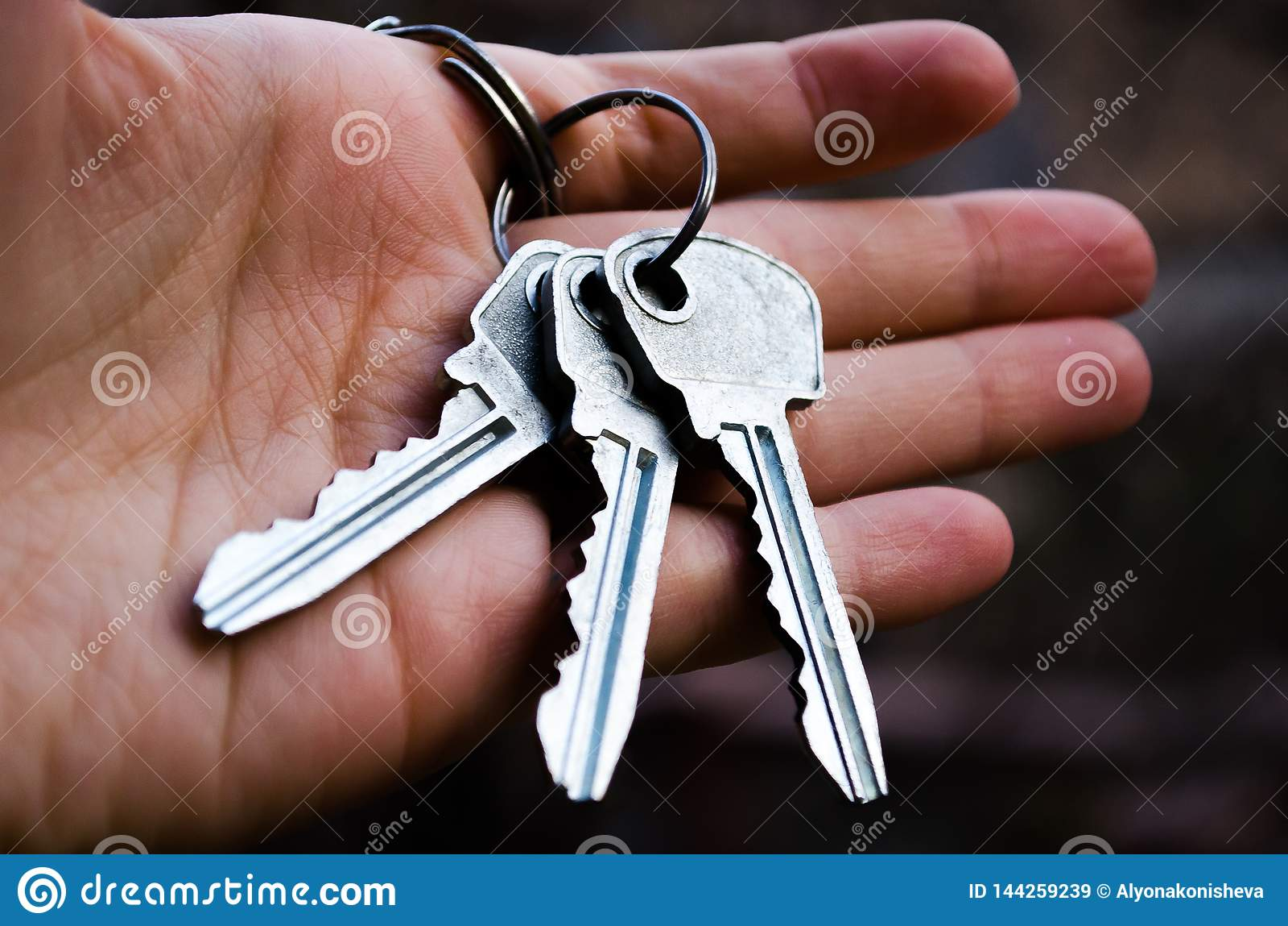 Ключи образовывают ключей Ключ в руке Фотография для вебсайтов о продаже квартир и домов, недвижимости Новый студень