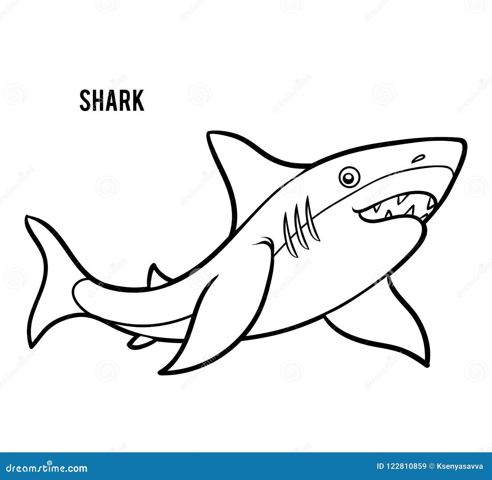 картинки акула для детей