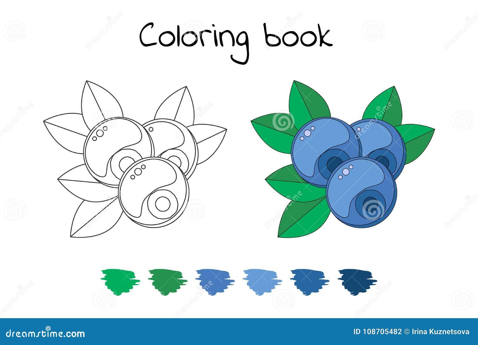 книжка раскраска для детей иллюстрация вектора голубики Bi