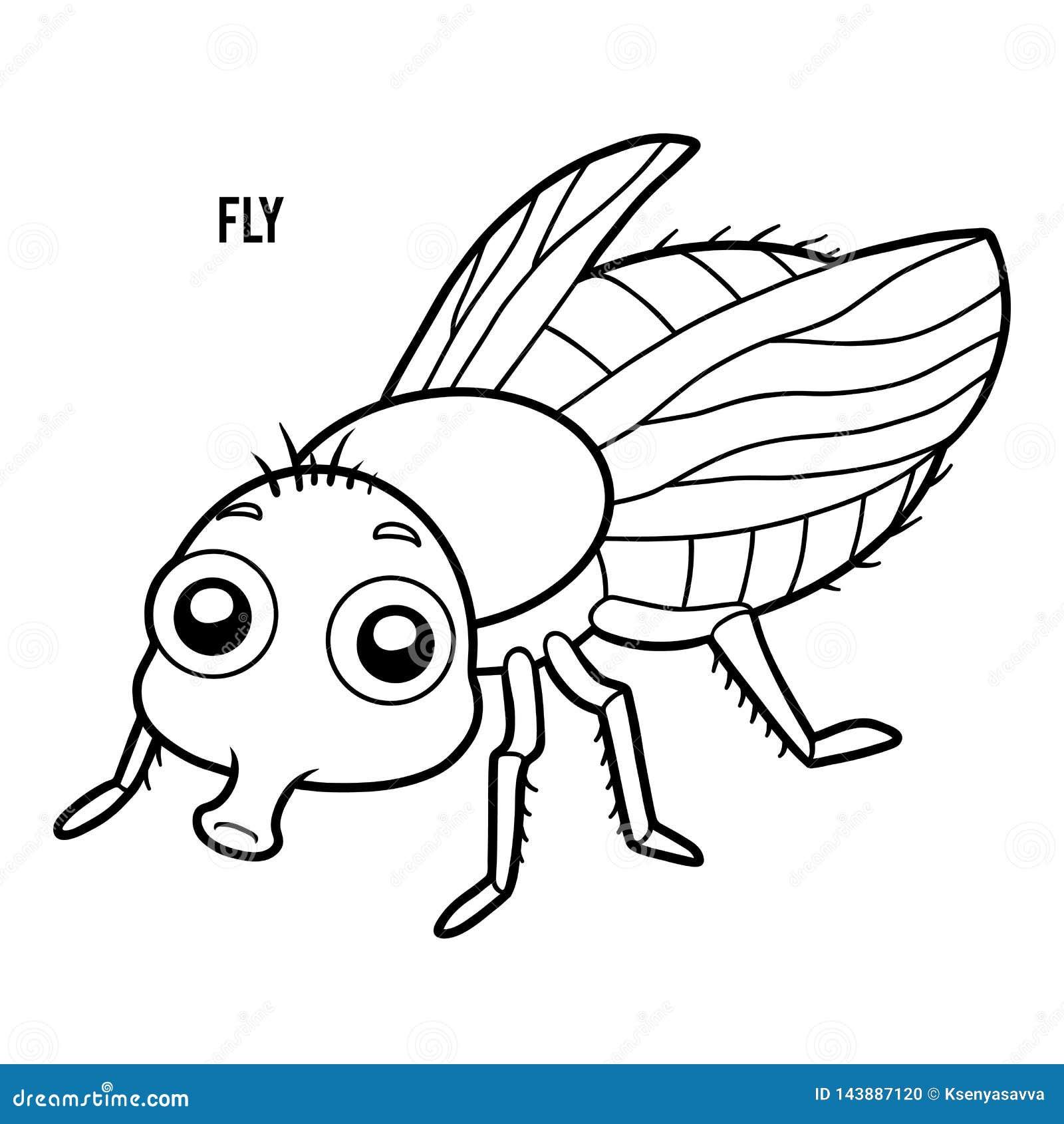 книжка раскраска муха иллюстрация вектора иллюстрации