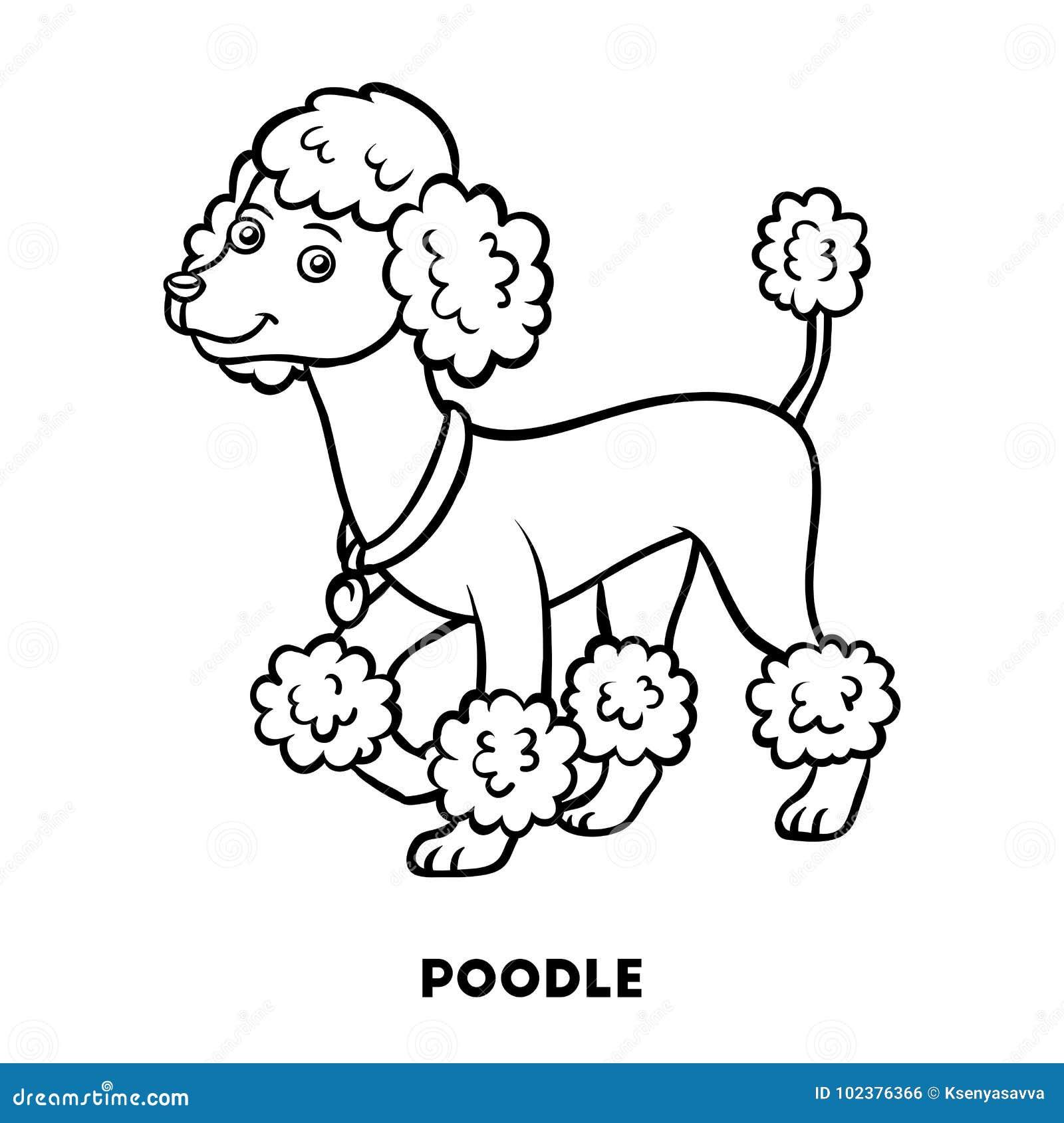 книжка раскраска породы собаки пудель иллюстрация вектора