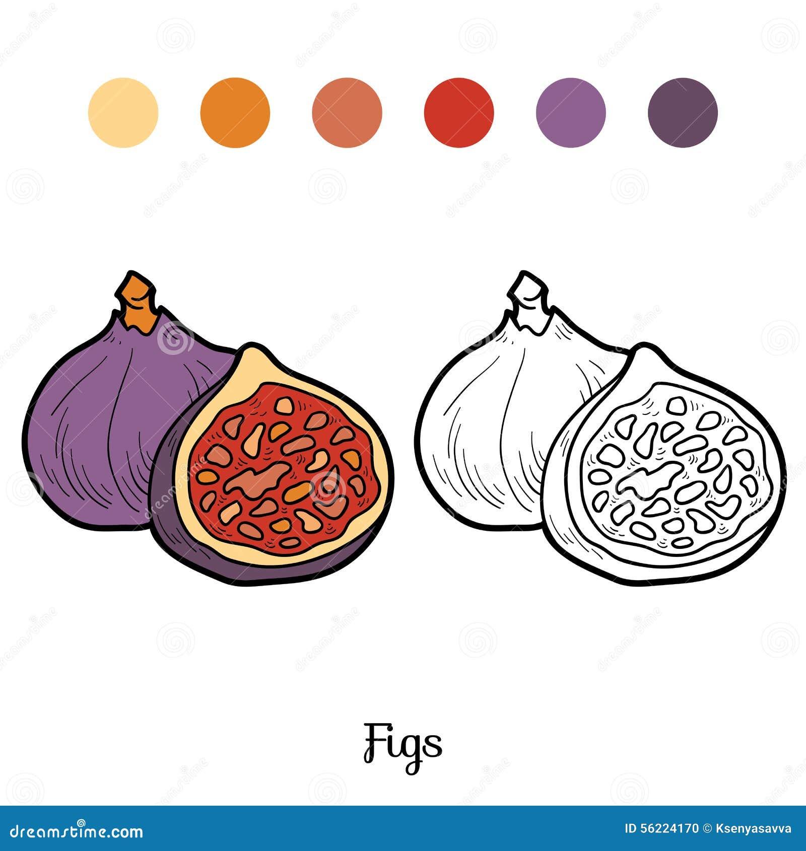Книжка-раскраска: фрукты и овощи (смоквы) Иллюстрация ...