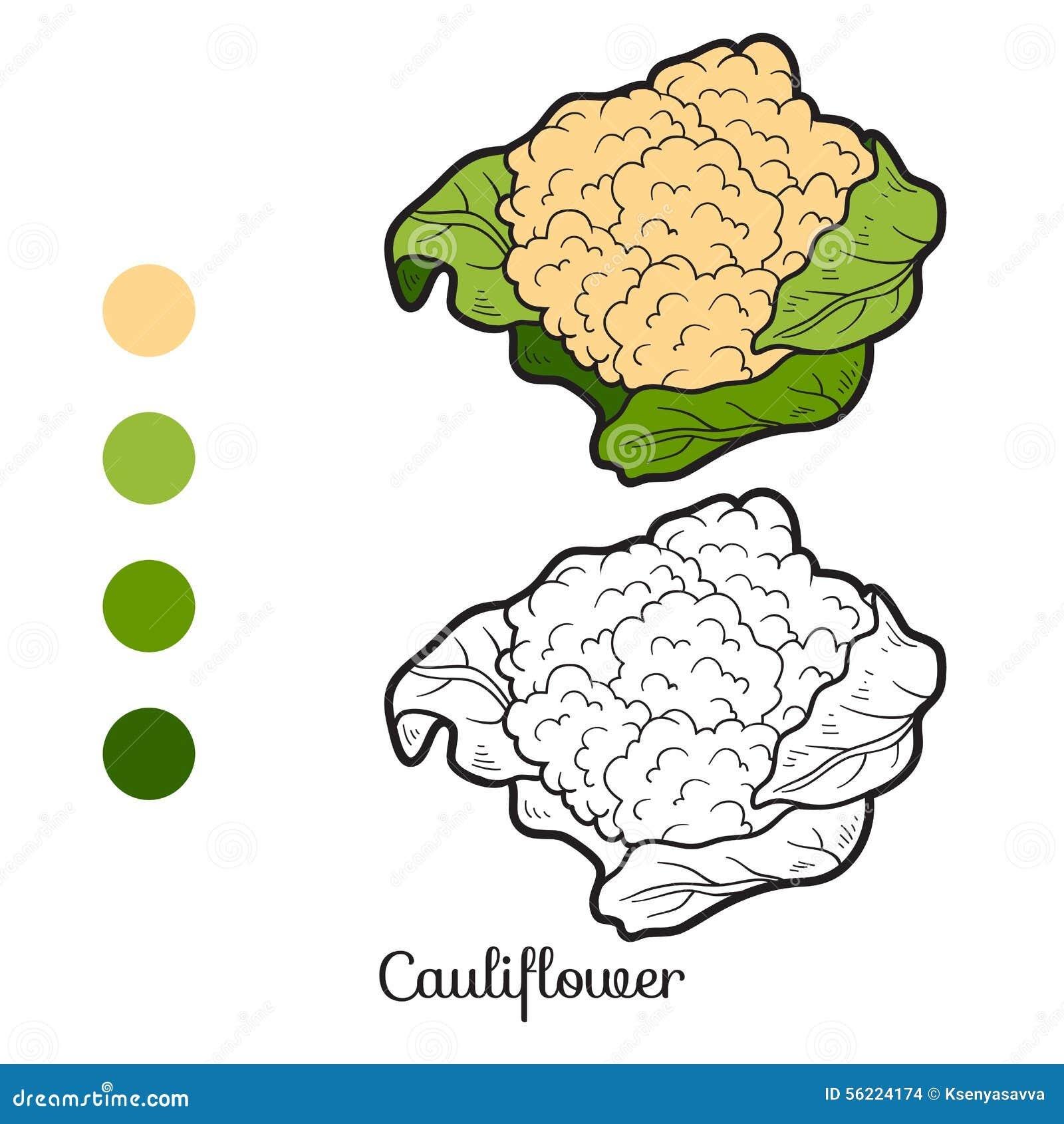 Книжка-раскраска: фрукты и овощи (цветная капуста ...