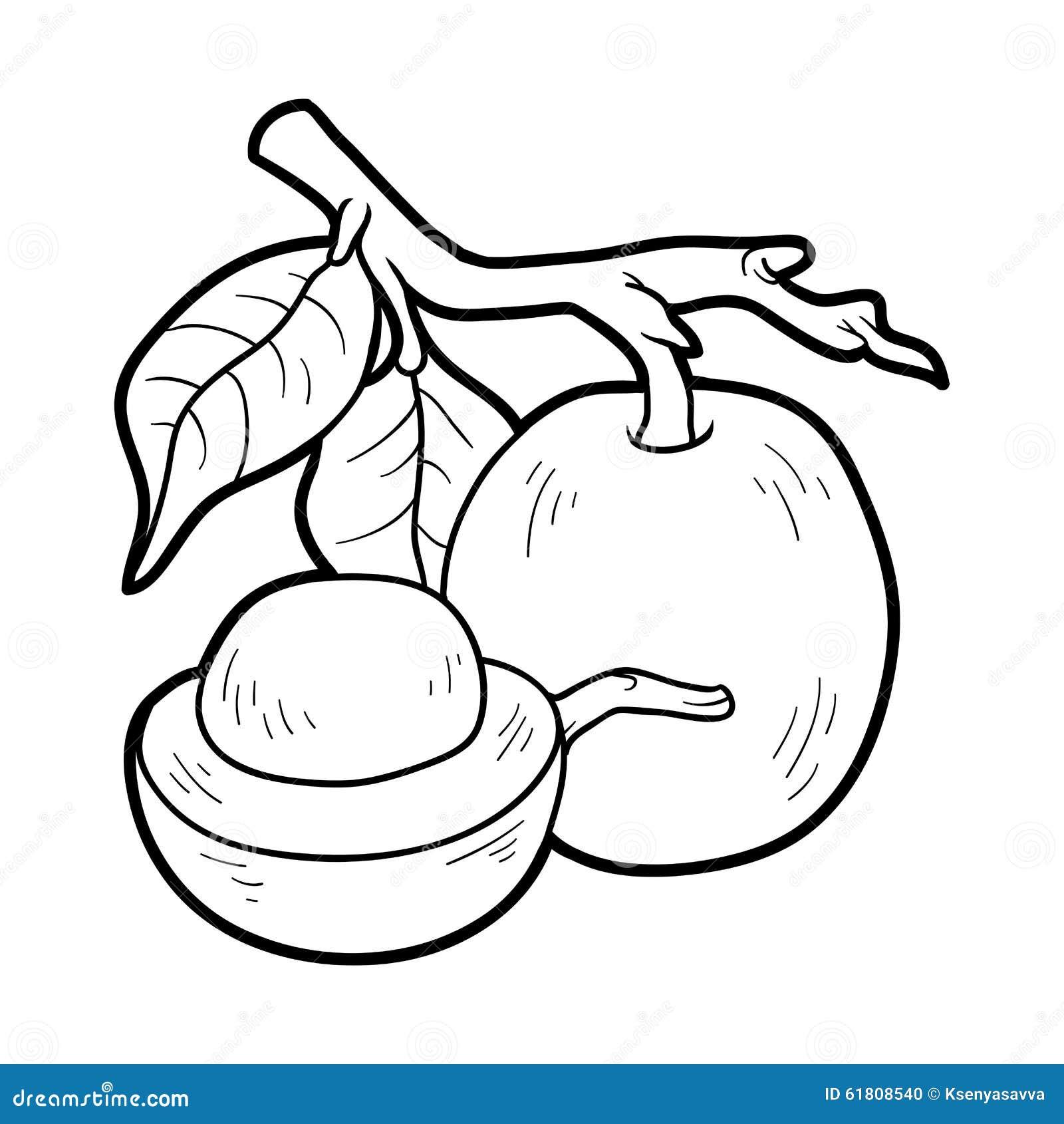 Книжка-раскраска для детей: фрукты и овощи (ximenia ...