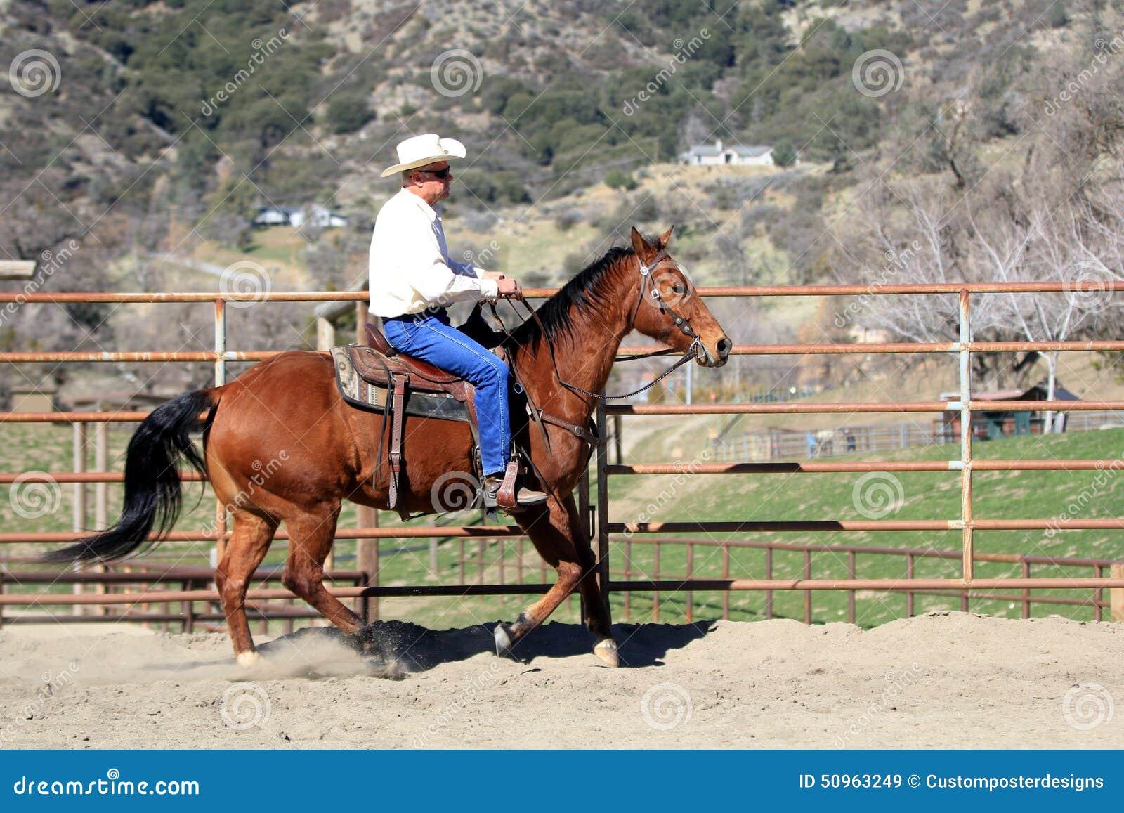 Ковбой ехать его лошадь