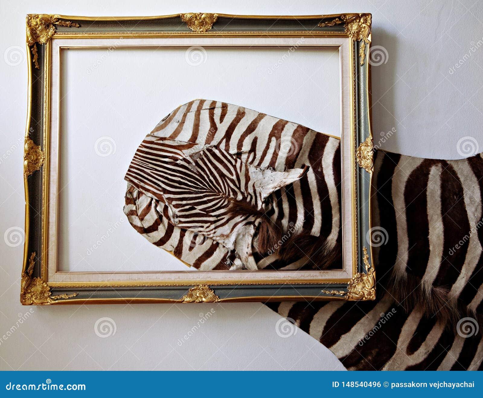 Кожа зебры