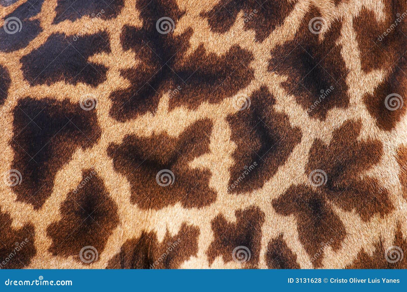 кожа giraffe