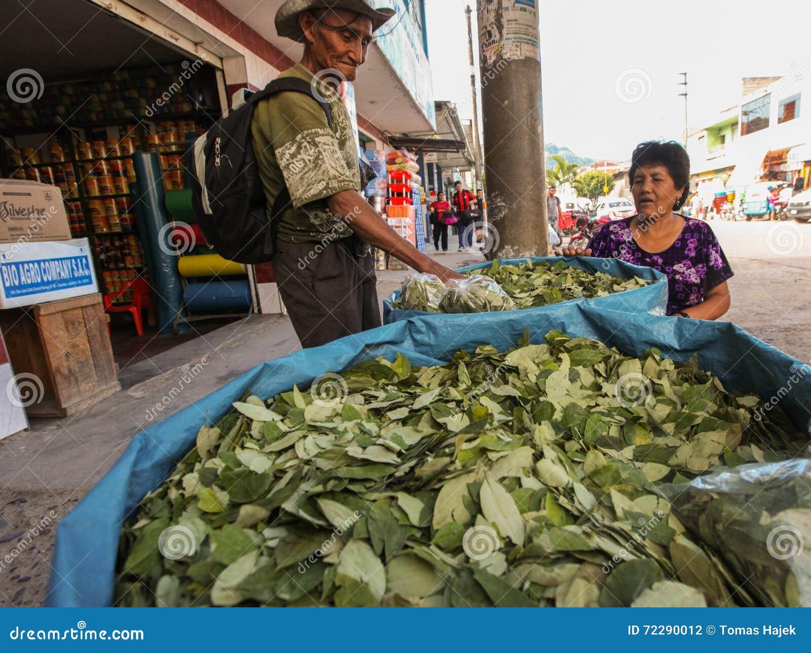 Download Кока выходит для продажи редакционное фотография. изображение насчитывающей джунгли - 72290012