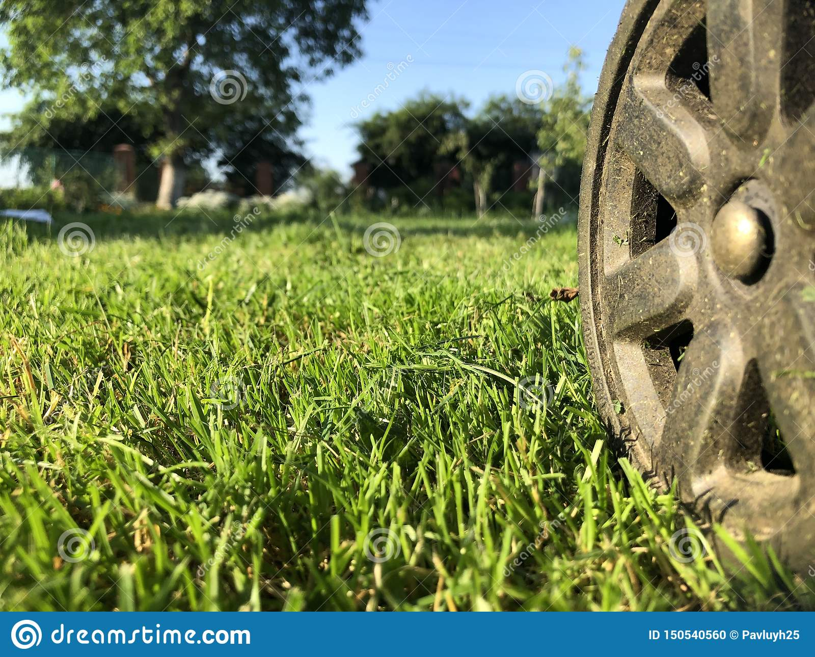 Колесо от газонокосилки на truncheted лужайке фермы