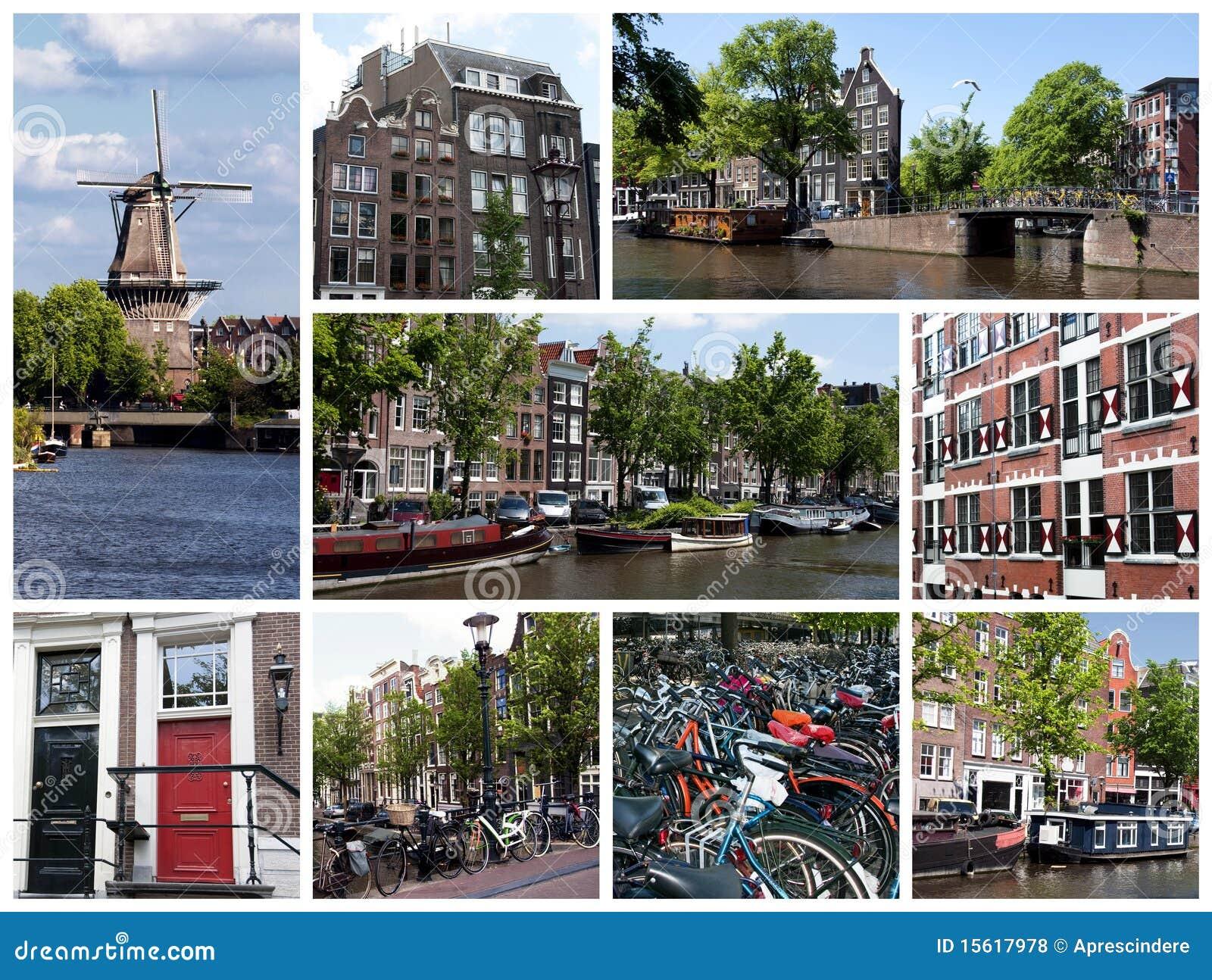 амстердам бизнес искусство