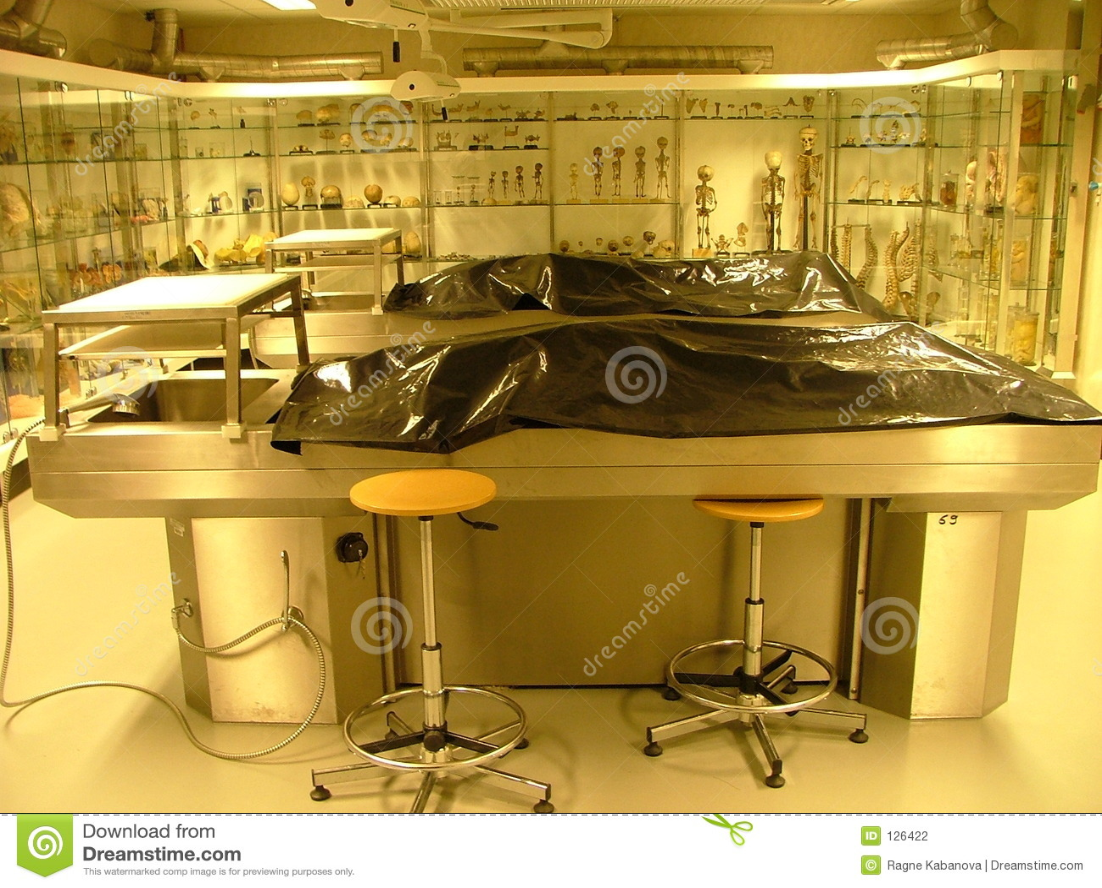 комната аутопсии