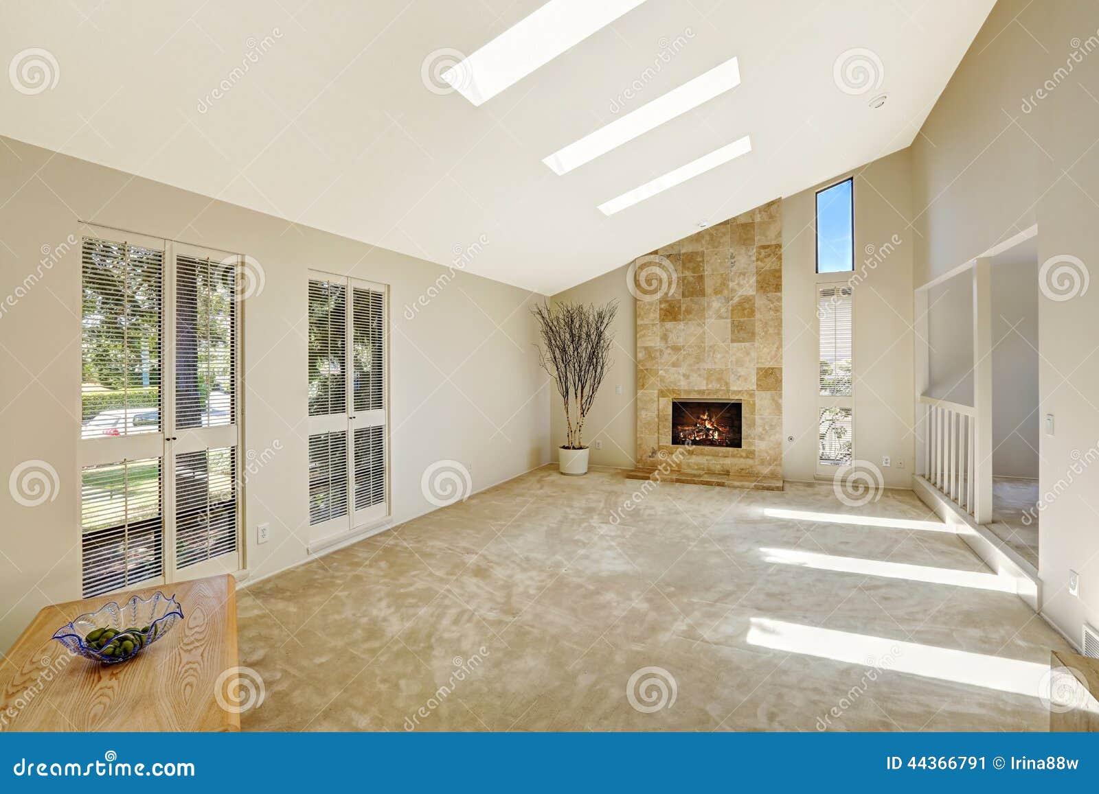 Комната Beautitful живущая с сводчатым потолком и окнами в крыше пусто