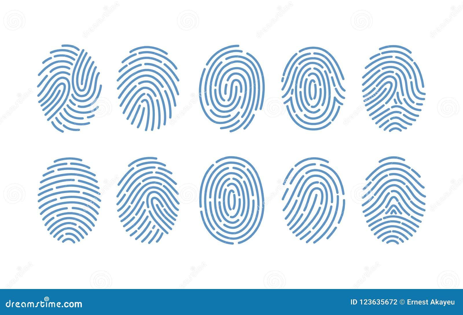 Комплект отпечатков пальцев различных типов на белой предпосылке Трассировки гребней трением человеческих пальцев Метод