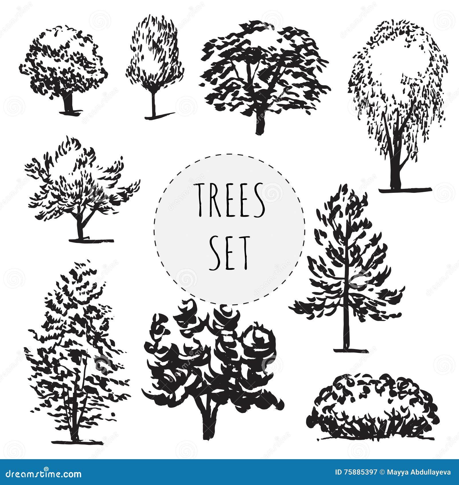 Комплект деревьев разных видов нарисованных рукой