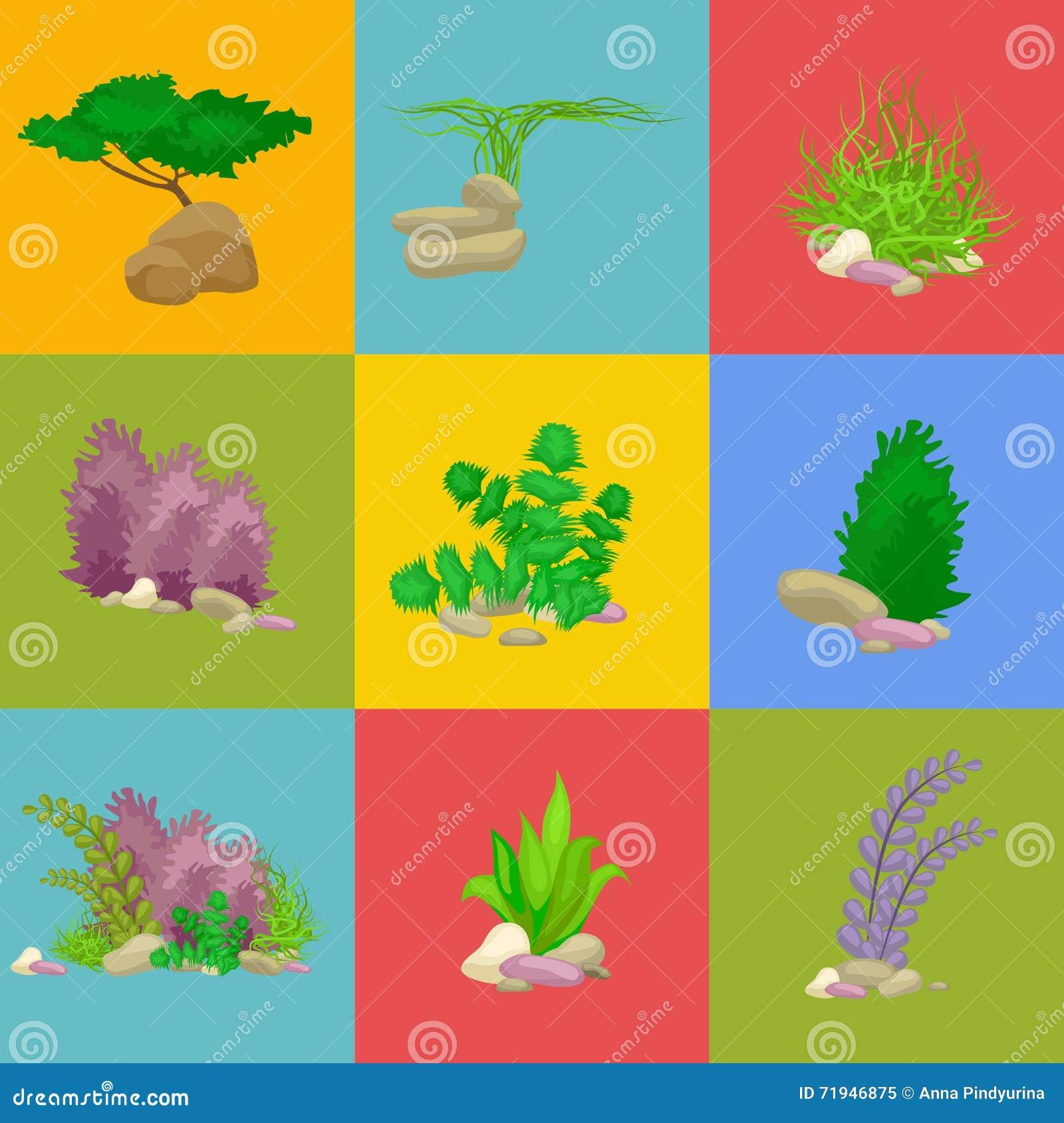 Комплект изолировал красочные кораллы и водоросли, флору вектора подводную, фауну