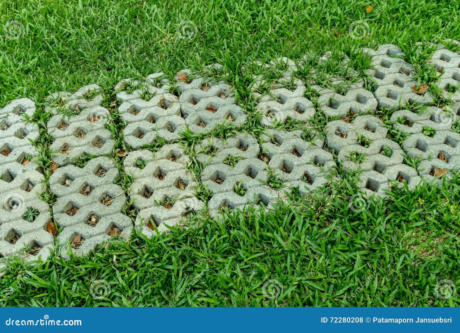 Download Конкретная тропа в саде стоковое фото. изображение насчитывающей природа - 72280208