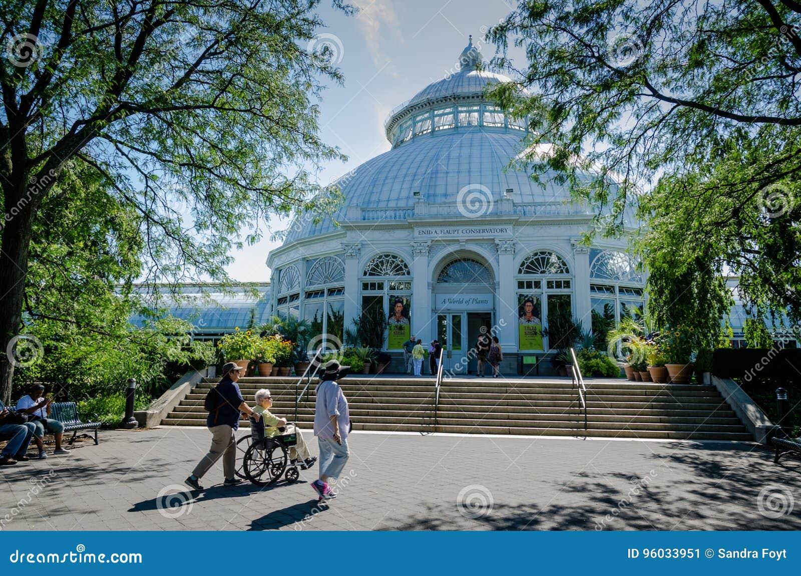 Консерватория Haupt - сад Нью-Йорка ботанический - Нью-Йорк