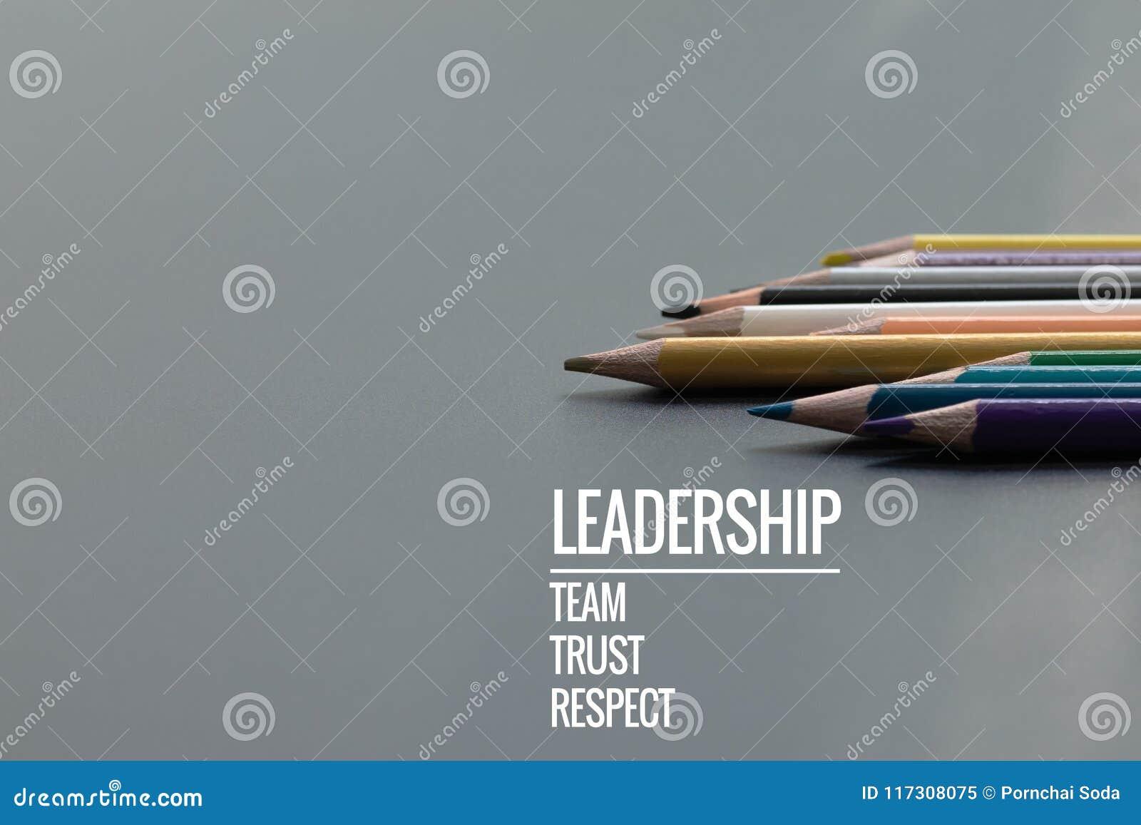 Концепция дела руководства Руководство карандаша цвета золота другой цвет с руководством, командой, доверием и уважением слова на
