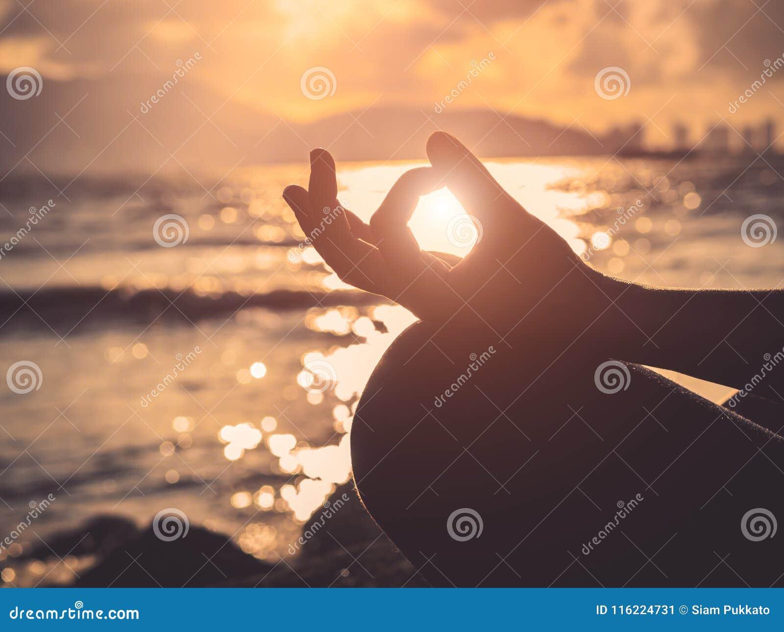 Концепция йоги Представление лотоса руки женщины силуэта практикуя