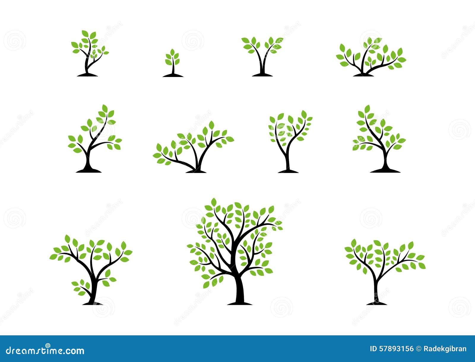 Концепция логотипа дерева, комплект вектора дизайна значка символа здоровья природы деревьев