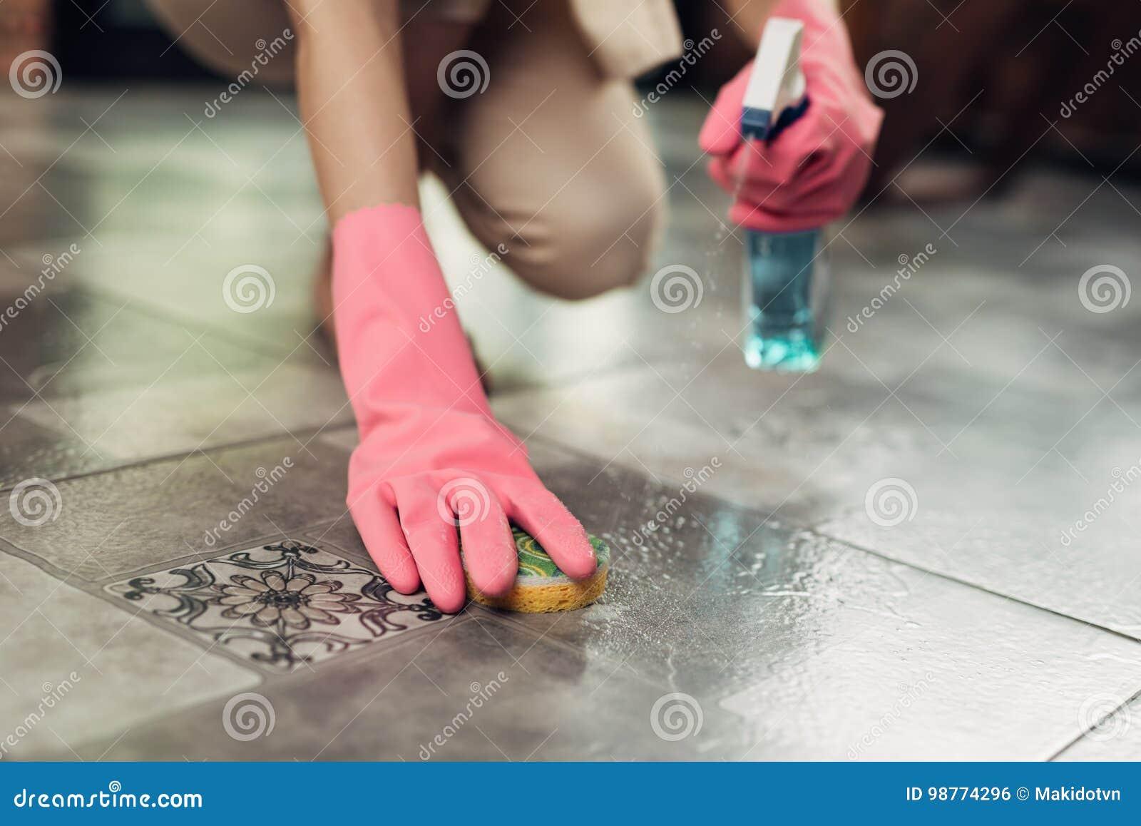 Концепция домашнего хозяйства и домоустройства Пол чистки женщины с mo
