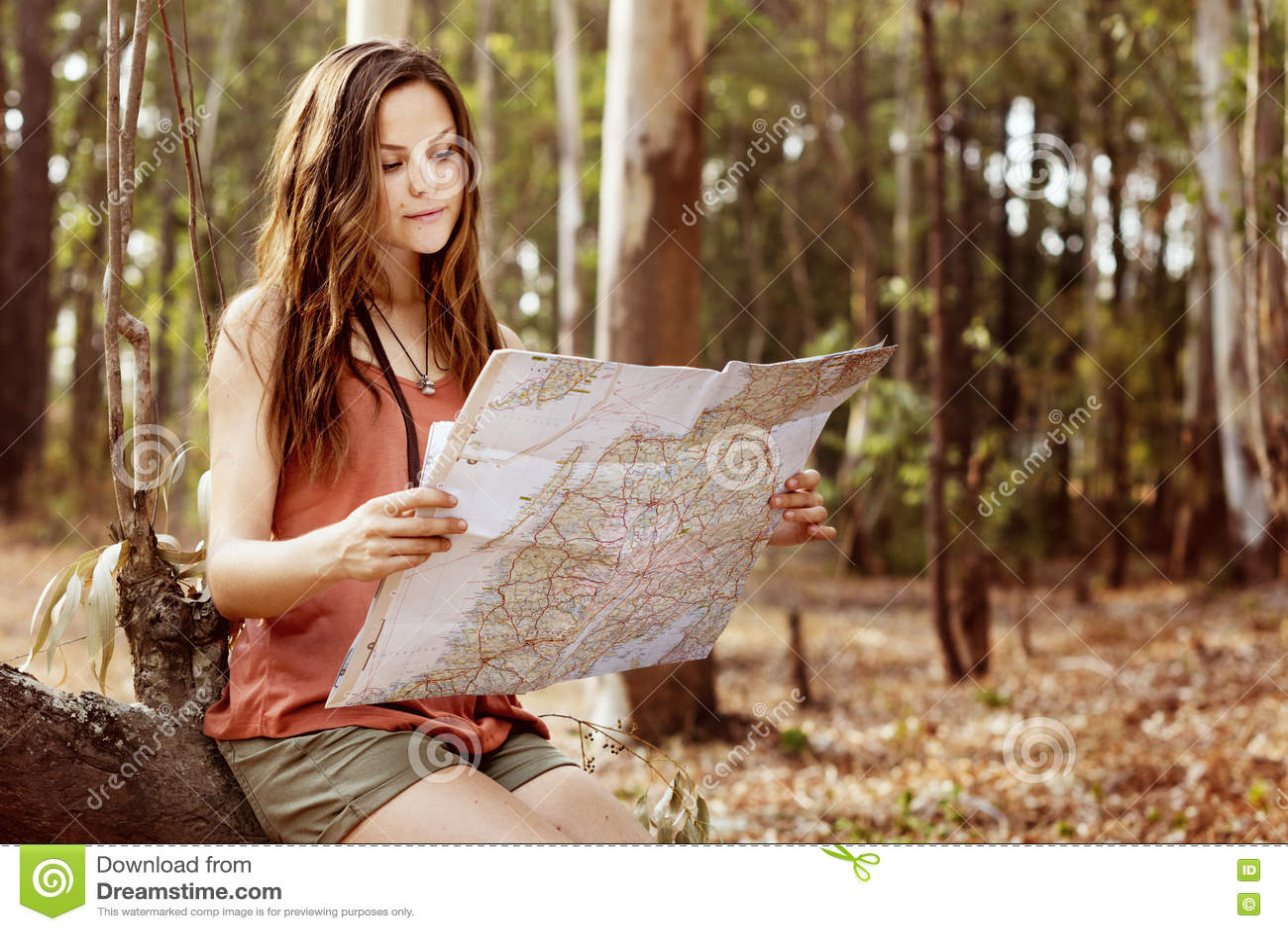 Концепция отключения трассы навигации назначения приключения карты