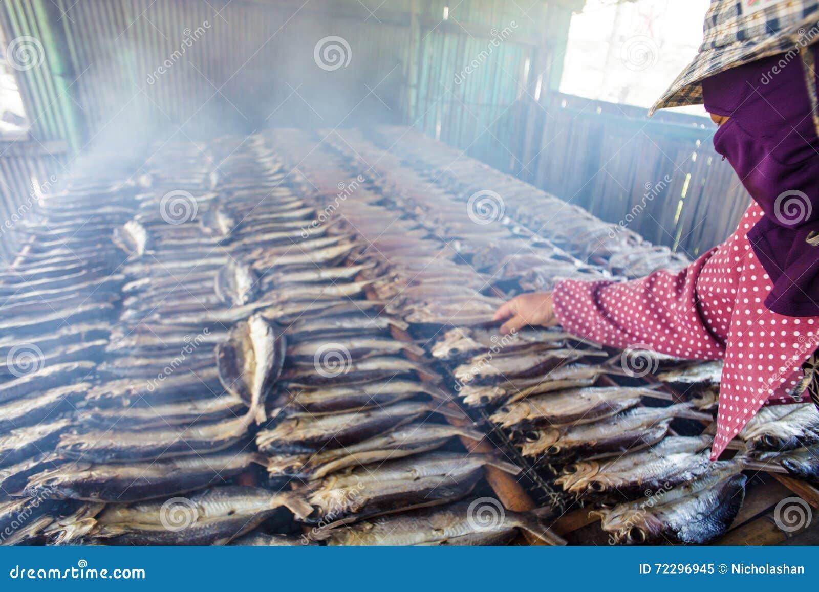 Download Копченые рыбы на плите в лете, Тайване Редакционное Изображение - изображение насчитывающей backhoe, просто: 72296945