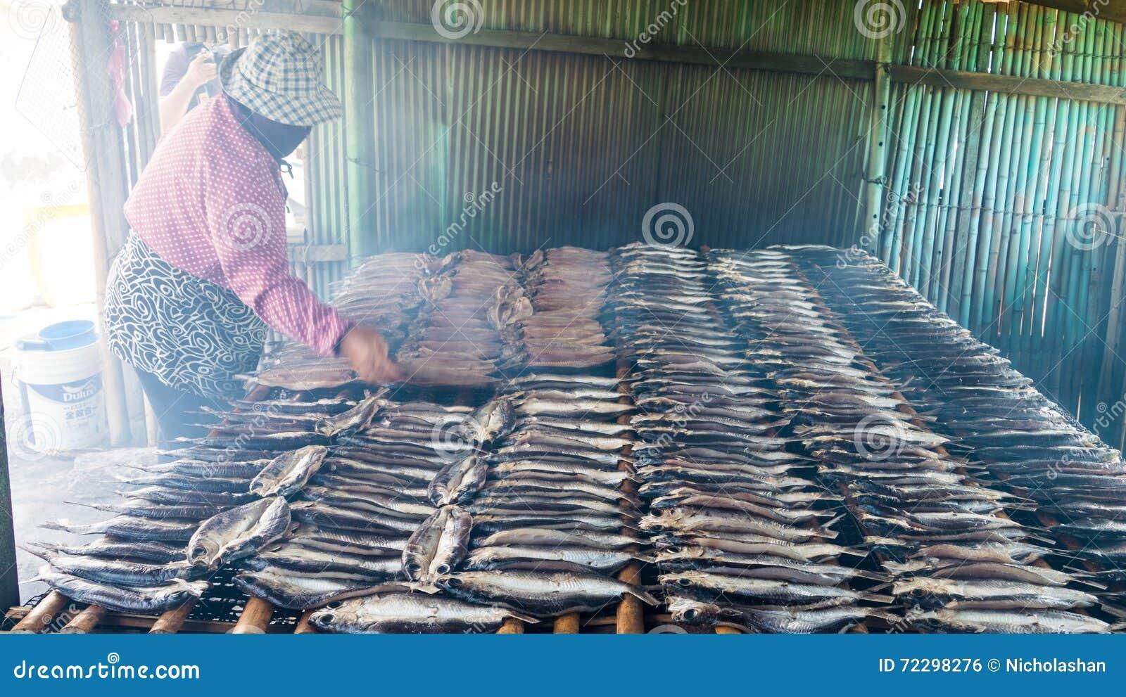 Download Копченые рыбы на плите в лете, Тайване Редакционное Фото - изображение насчитывающей breakaway, просто: 72298276