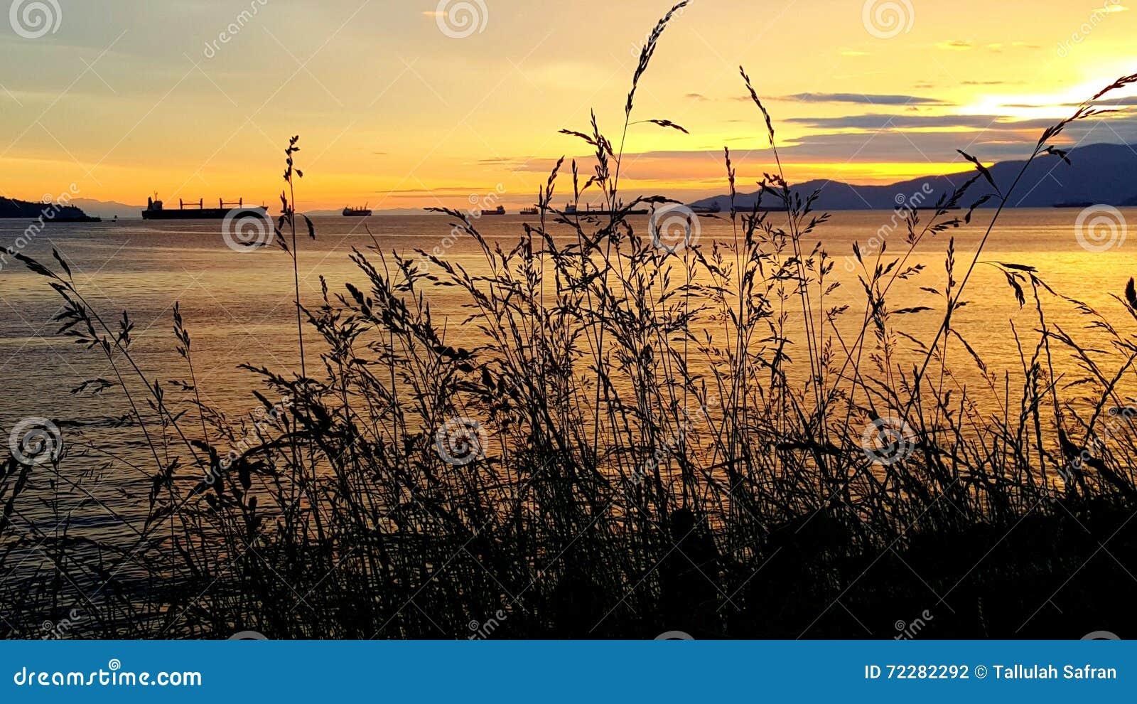 Download Корабль на воде стоковое фото. изображение насчитывающей vancouver - 72282292