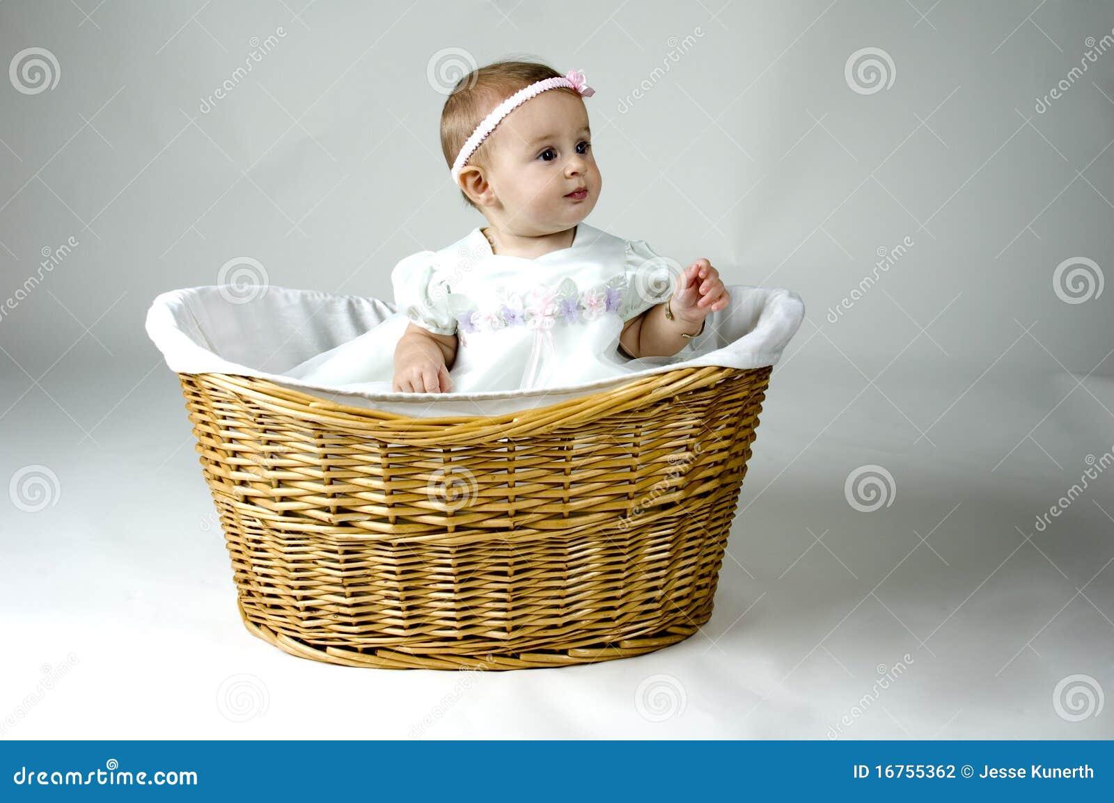 корзина младенца милая