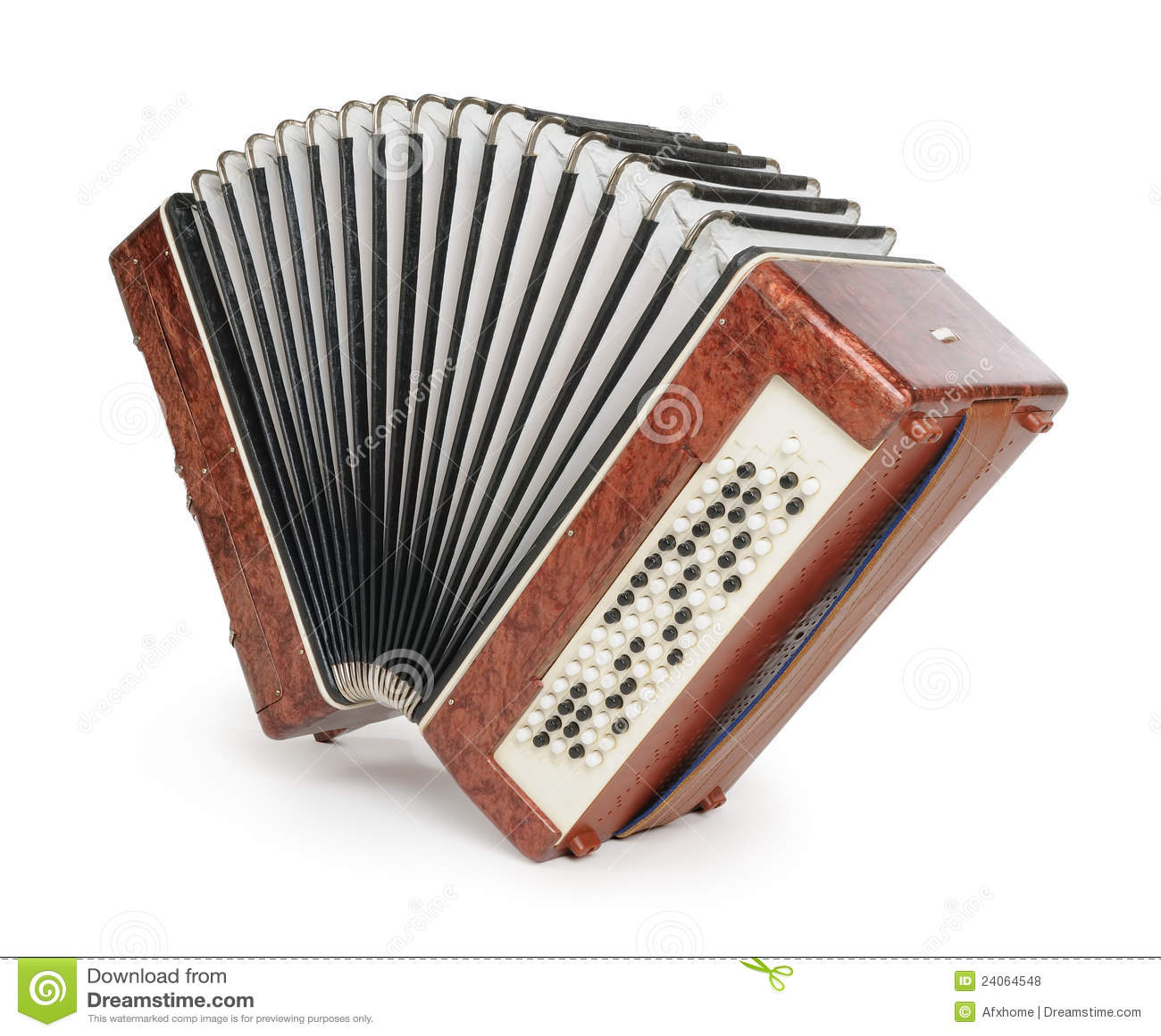 коричневый цвет аккордеони bayan