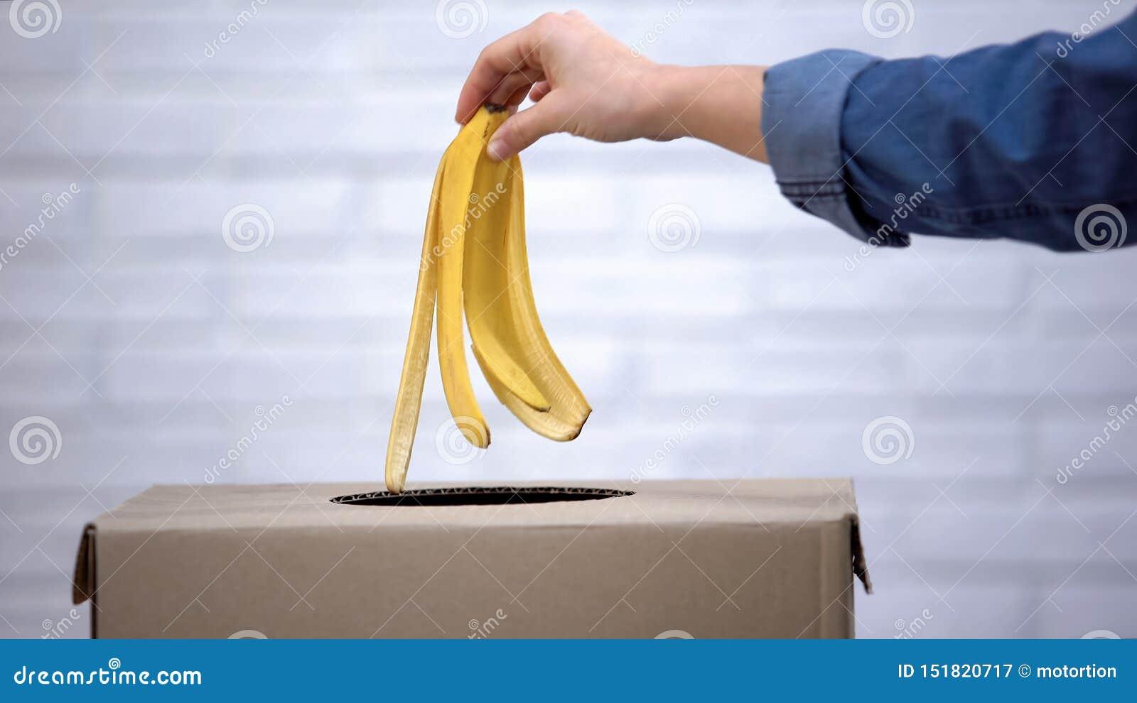 Корка банана руки бросая в мусорное ведро, повторно используя отход сортируя, крупный план