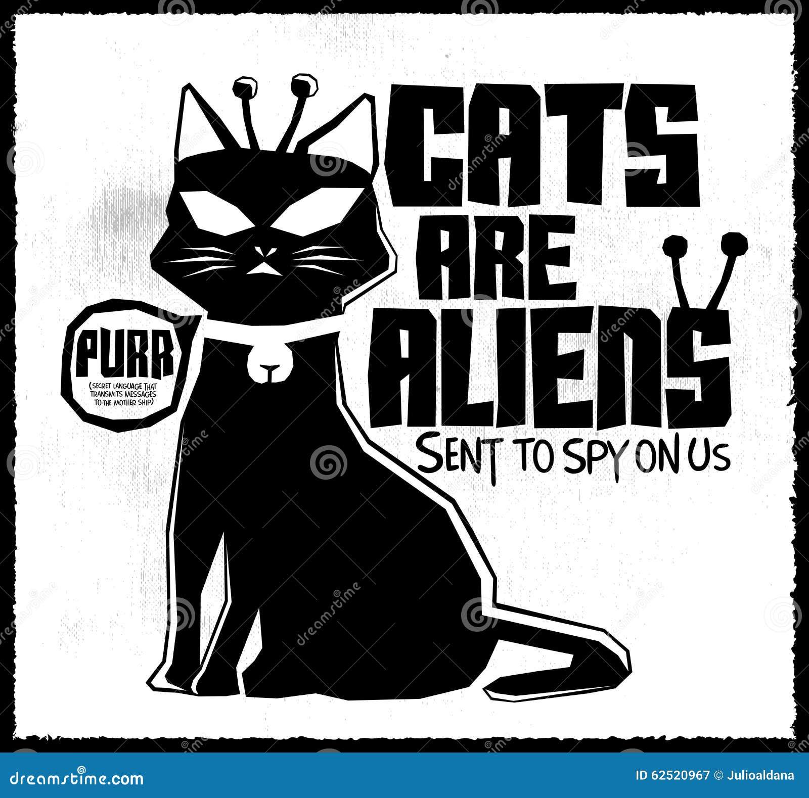Коты чужеземцы