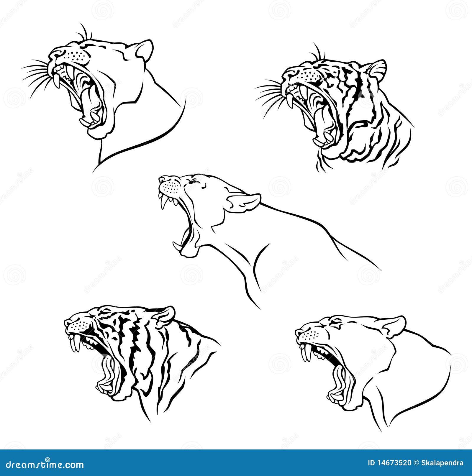 Рисунки звериных оскалов