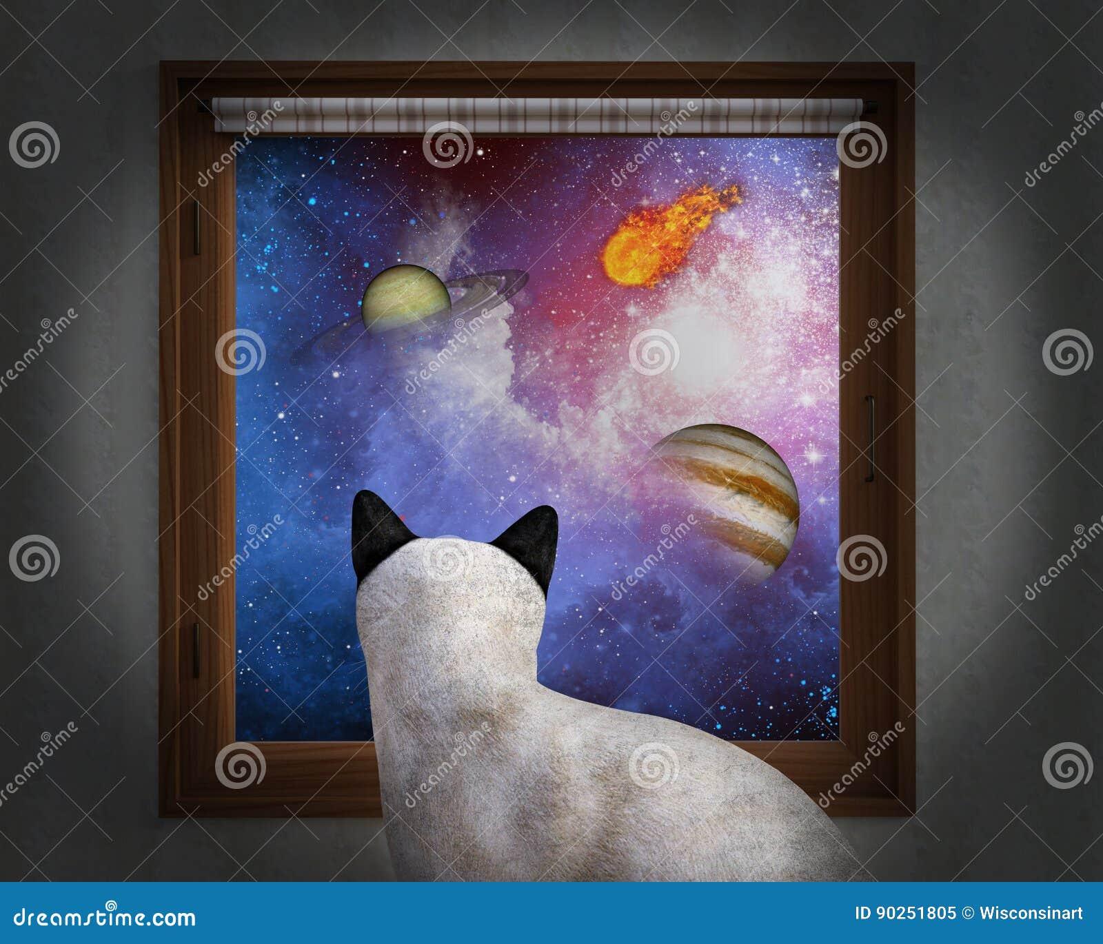 Кот сидит окно, звезды, планеты