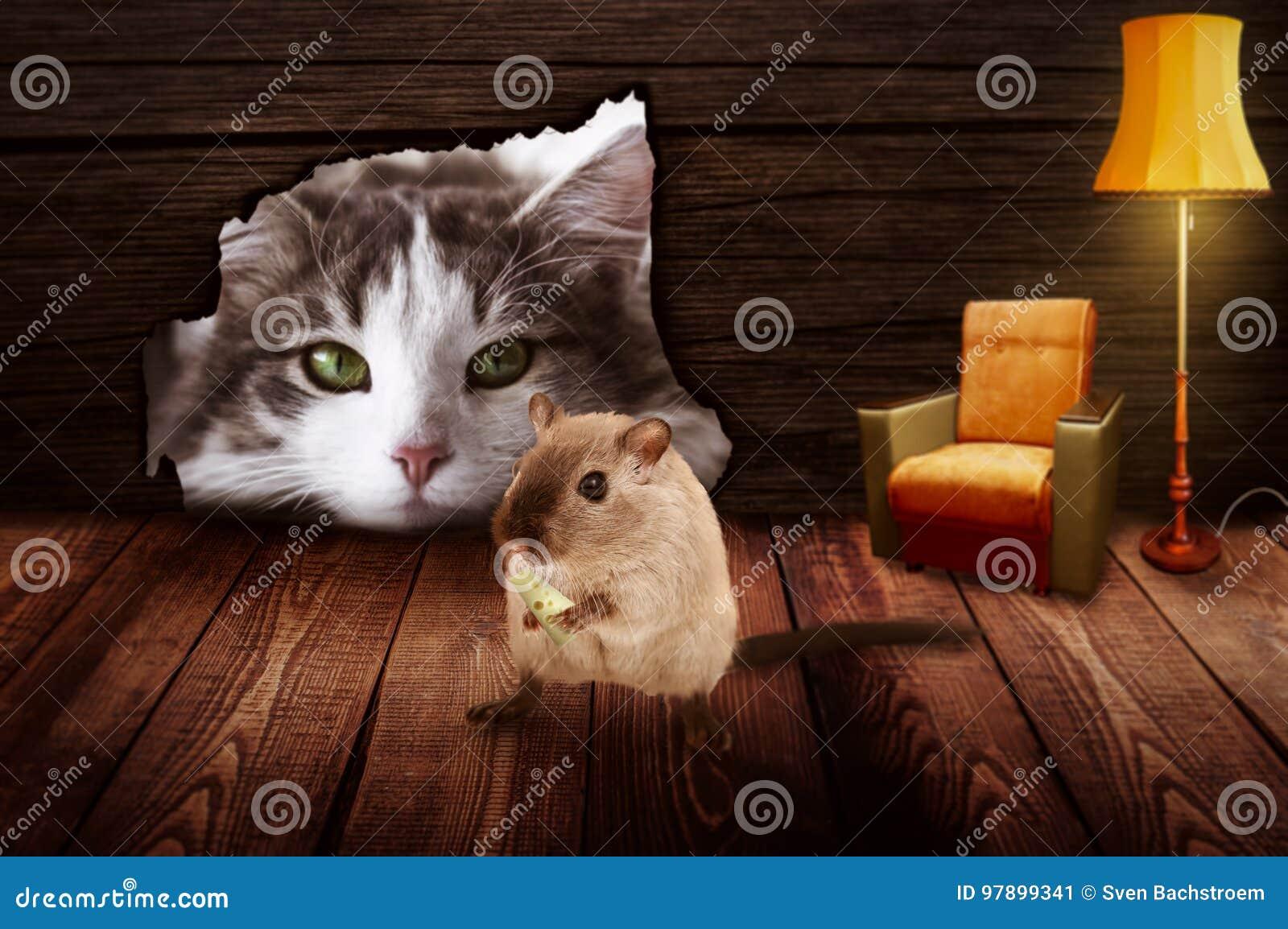Кот сидит перед отверстием мыши и наблюдает мышью